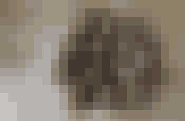 Hjemmelavede chokorug