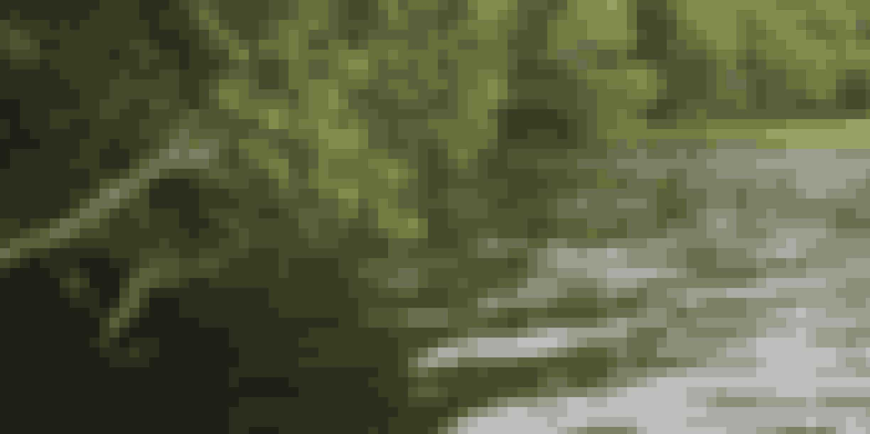 Silkeborg ligger smukt med sø og skov.