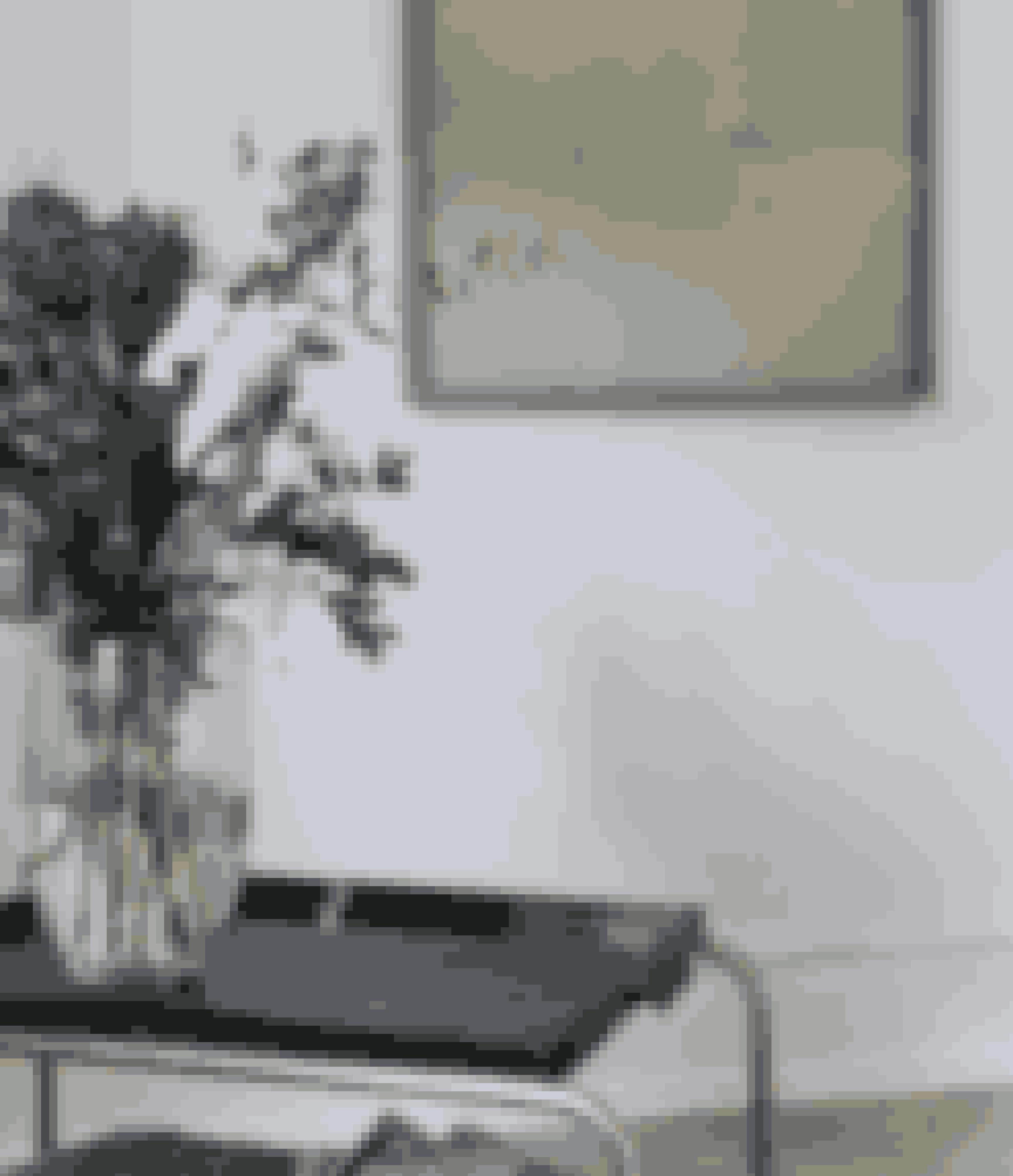 En rullevogn er et fleksibelt møbel, og så giver det dynamik til rummet, at den ikke står op ad væggen. Den er fundet hos en marskandiser.