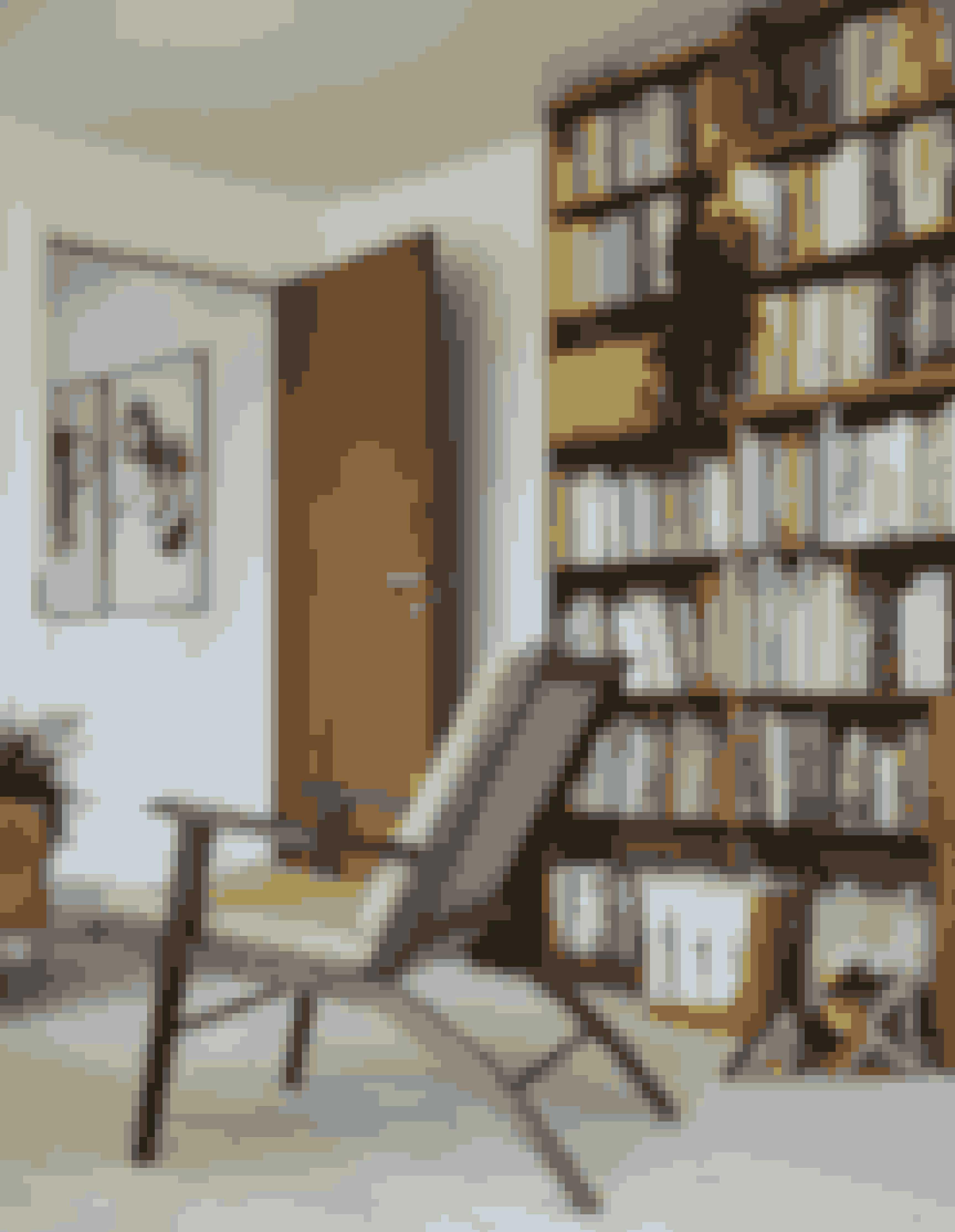 Bogreolen skaber tyngde i rummet, hvor stolen i retrodesign er lavet af møbelsnedker Martin Kaufmanas. Plakaterne med grafisk design fra 1920'erne er købt på Bauhaus-museet i Berlin.