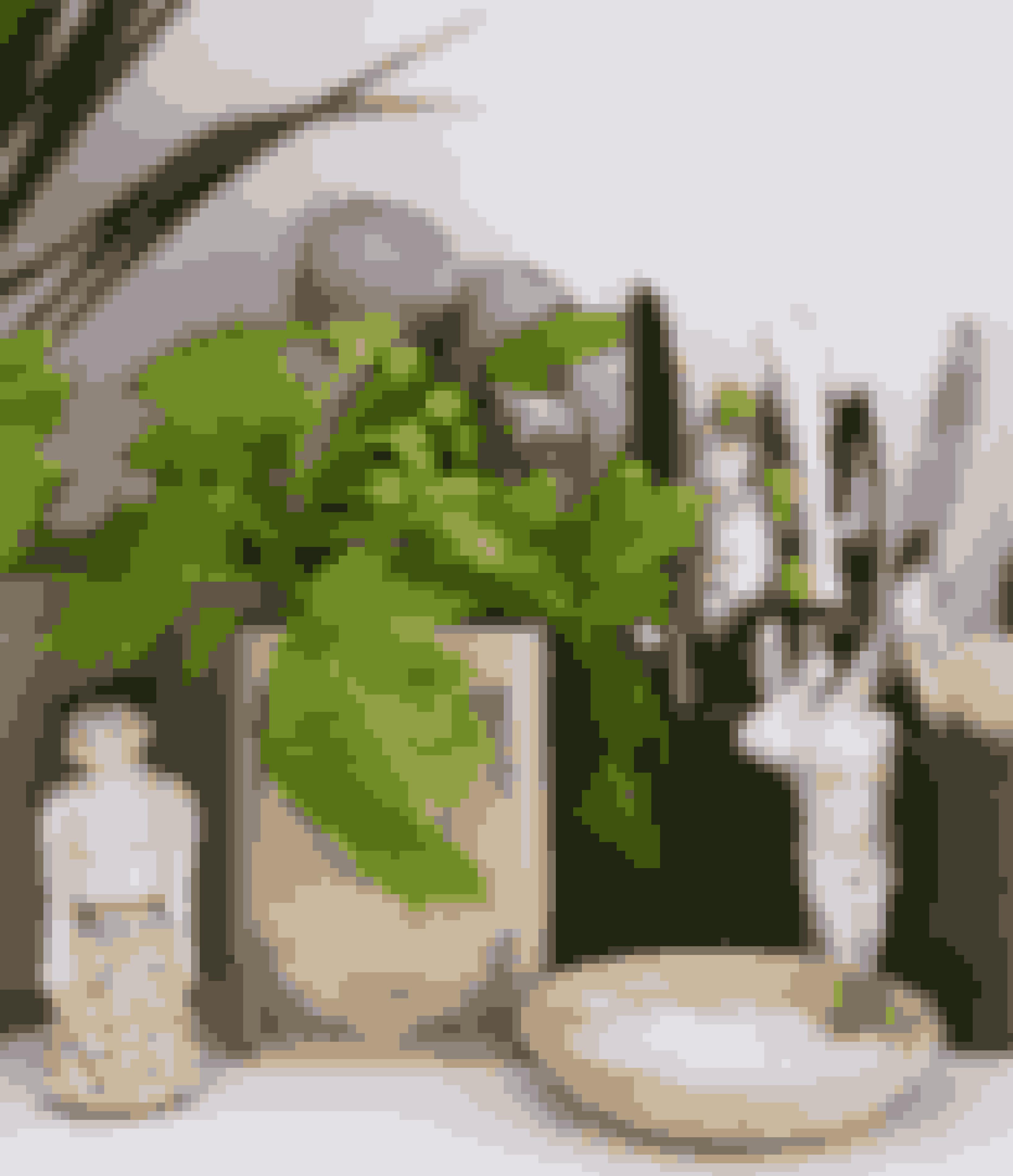 Æsker, saltkar og grønne planter er med til at give personlighed i et køkken.