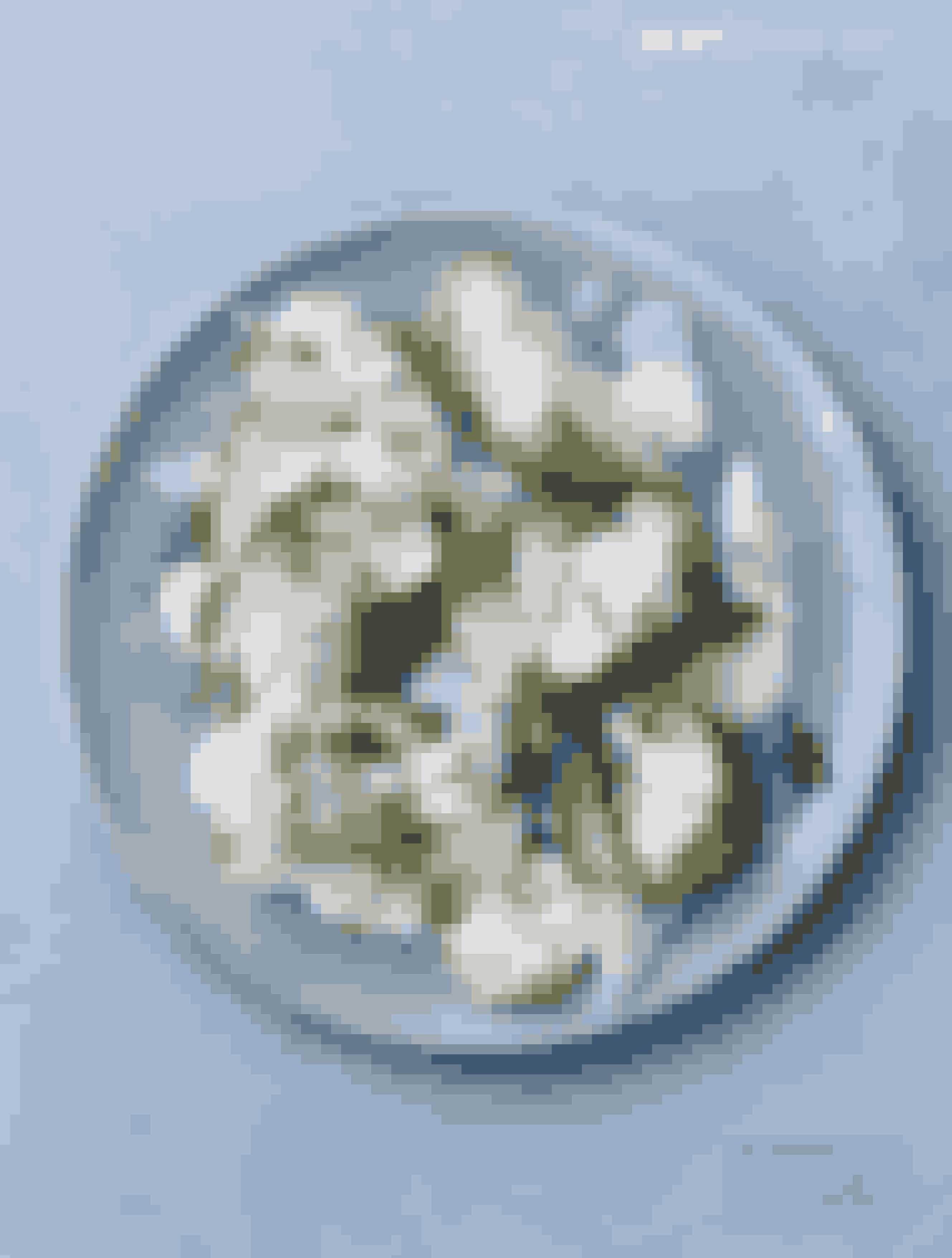 Spis den som let frokost, tilbehør til din middag eller som selveste hovedmåltidet. Lav den med få, men friske gode råvarer, og bind smagen sammen af dressinger med både sødme, skarphed og fedme. Salaten er til det hele.