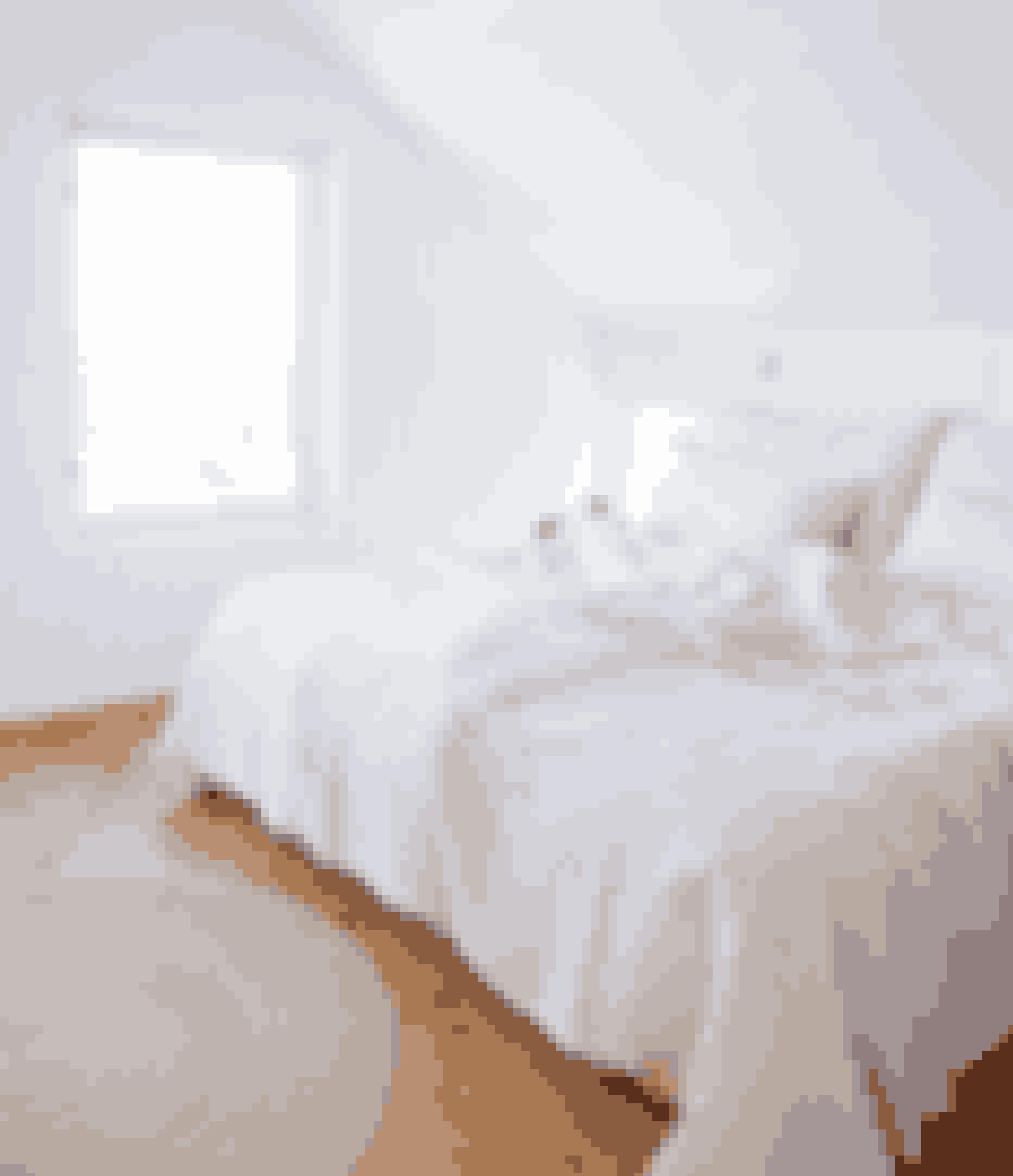 Hold dit soveværelse helt i hvidt for at skabe et roligt rum. Sengetøj i hør, bomuld og andre naturlige materialer giver en nordisk følelse.