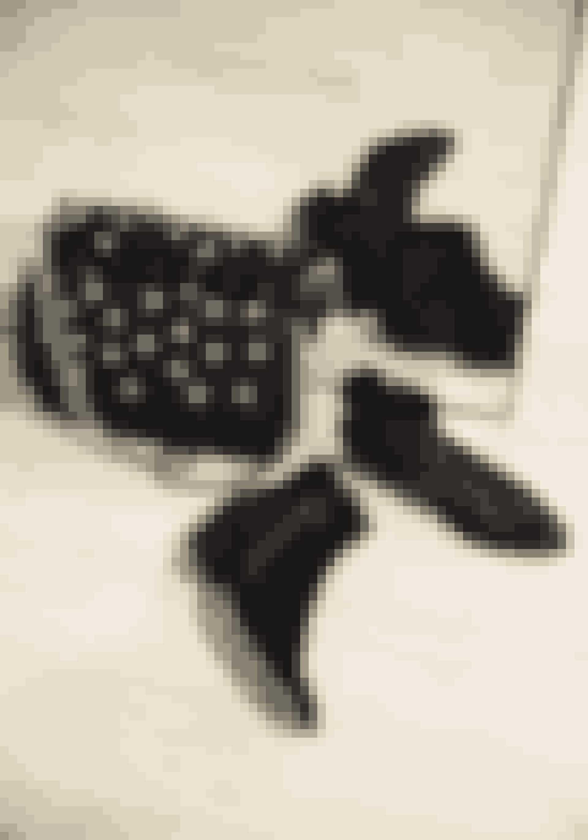De bordeauxrøde støvler foran spejlet fra Notre Monde og tasken fra Rika vækker altid opsigt.