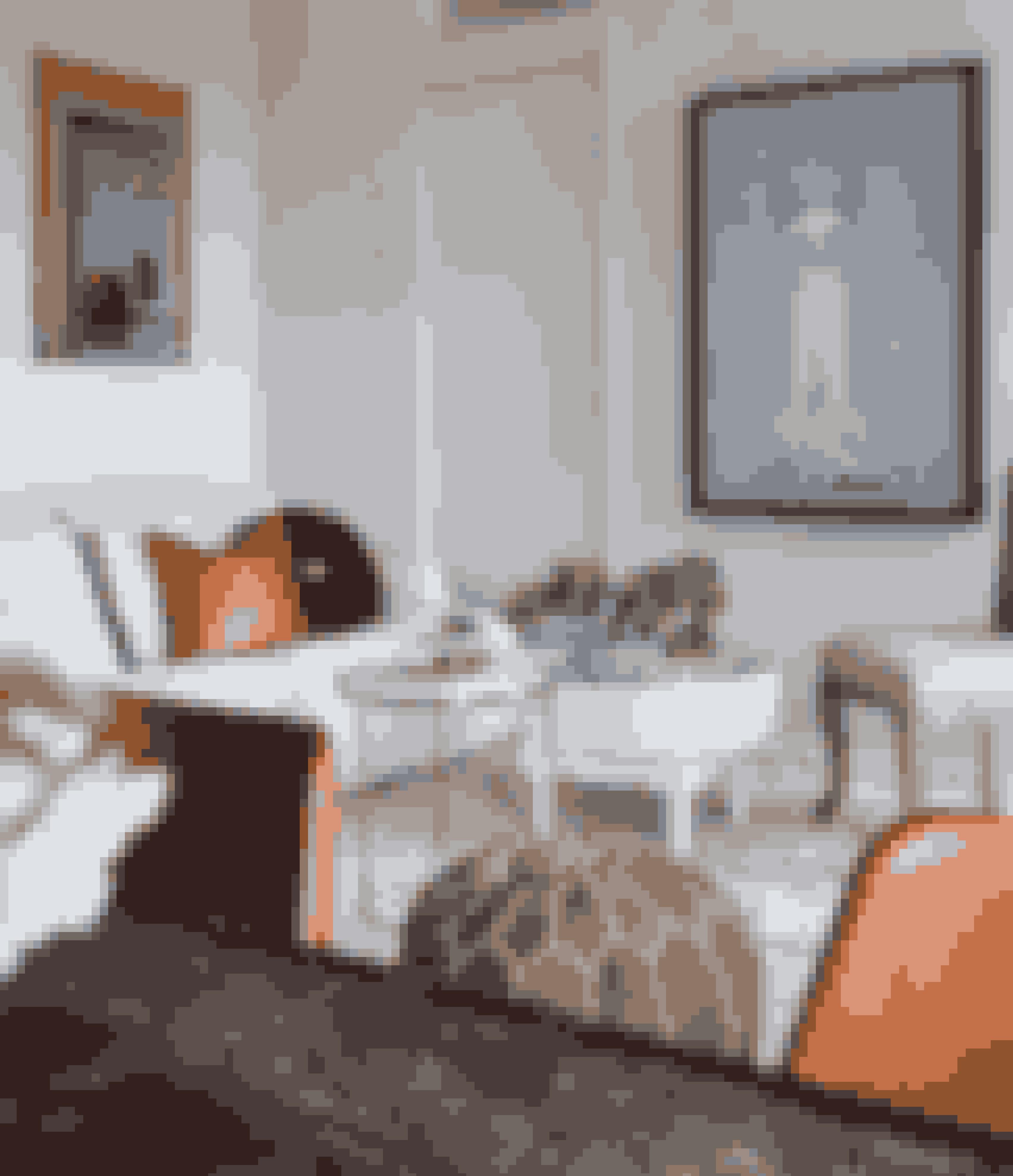 Her bor: Interiørstylist Tone Kroken, 51 år, eksmanden Henrik, datteren Emma, 18 år, og sønnen Emil, 19 år.Bolig:Lejlighed på 46 m² i Gamlebyen i Oslo.Stil:Nordisk romantik med vintagefund.