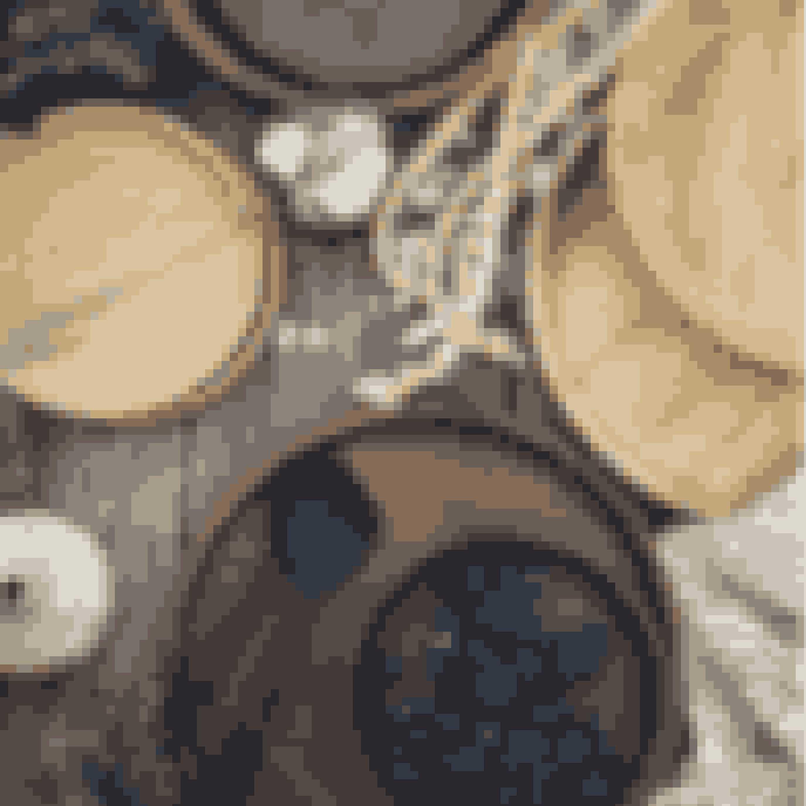 Dette serveringssæt passer perfekt ind i den skandinaviske stil. Brug det som service, serveringsbræt eller til opbevaring på altanen. Naturmaterialerne emmer af dansk sommer.