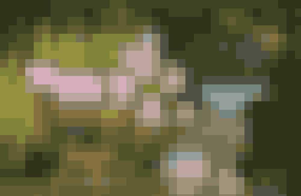 Sommerhit Giv dine fine gamle ting liv ved at bruge dem til blomster. Klatrerosen Raubritter og løvefod er et sommerhit i opsatsen med signeret bronzemontering fra ca. 1900, privateje. Den iriserede glasvase med skinnende overflade i regnbuens farver og bronzemontering er antagelig fra Fyens Glasværk ca. 1910 og koster 425 kr. hos Laurines Hus. Den trompetformede 1800-tals bordopsats med metalmontering står til 900 kr. hos Møllebo Antik.