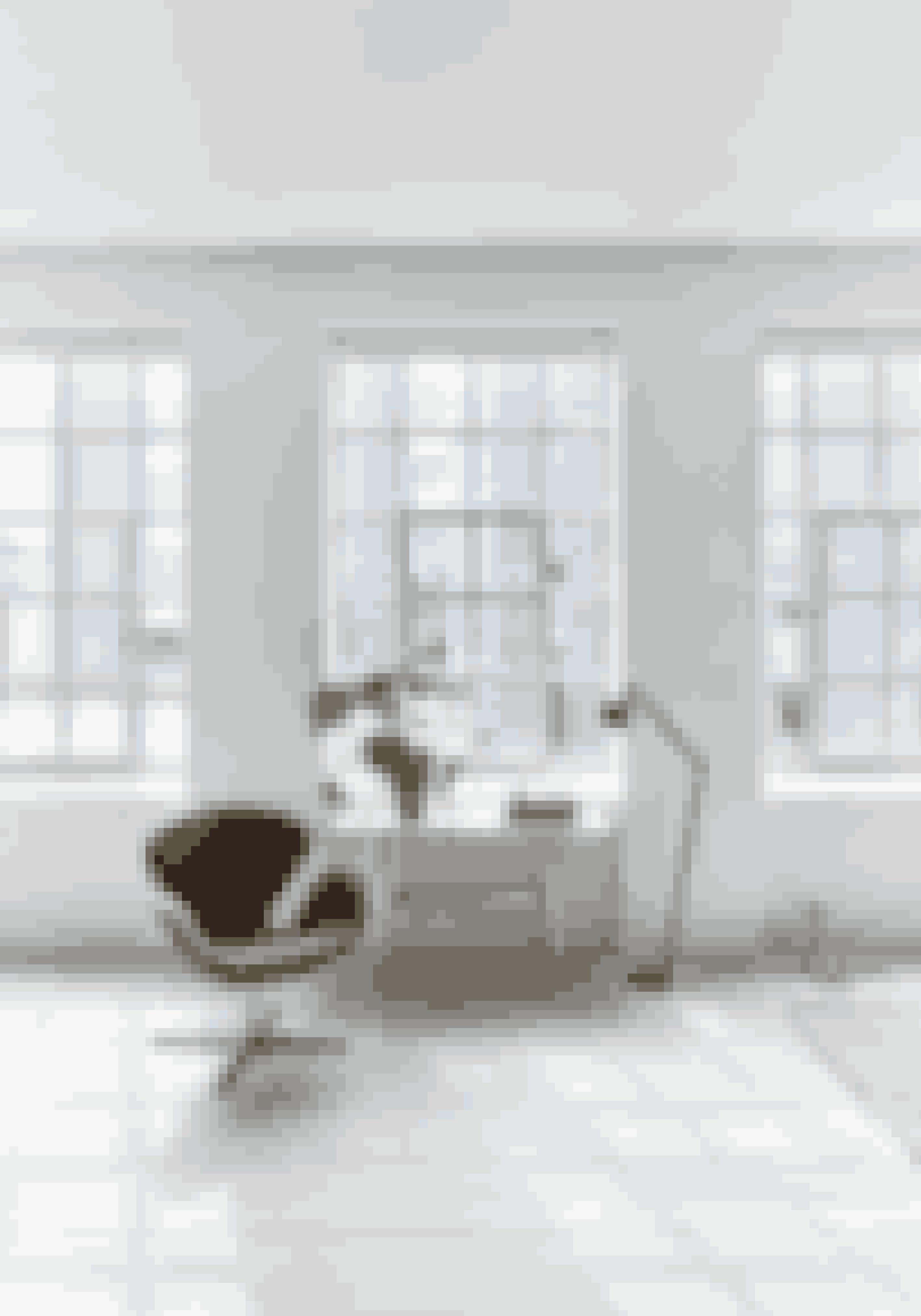 Brug grønne planter til at opbløde det industrielle udtryk. Vipp-grundlægger Holger Nielsen, som også er Jette Egelunds far, har designet sidebordet. Svanen tegnet af Arne Jacobsen er fra Fritz Hansen. Gulvlampen er fra Vipp.
