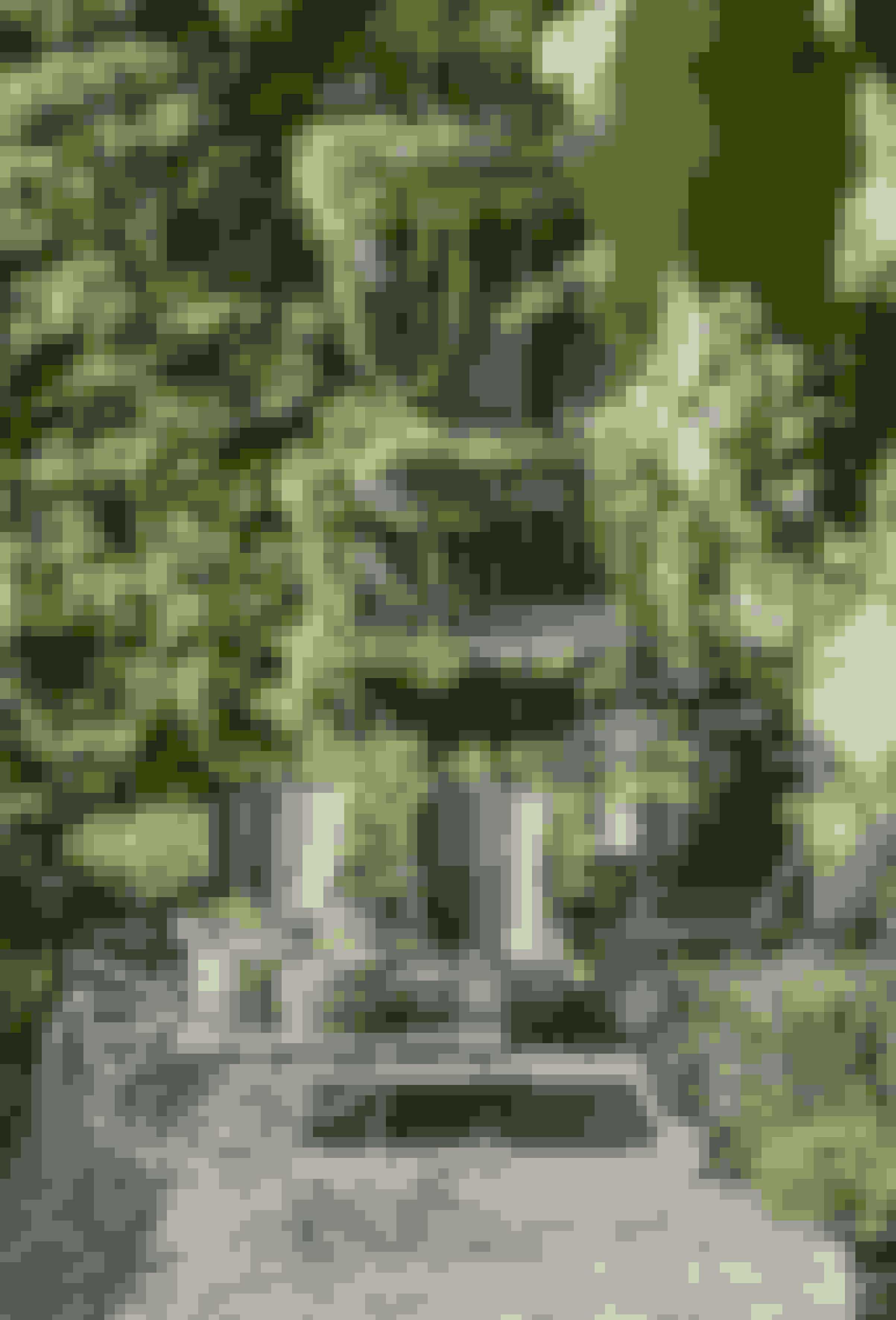 Vælg klatreplantertil din have, og laddem vokse vildt opad mure og rækværk.Det giver en vild ognaturlig havestil.