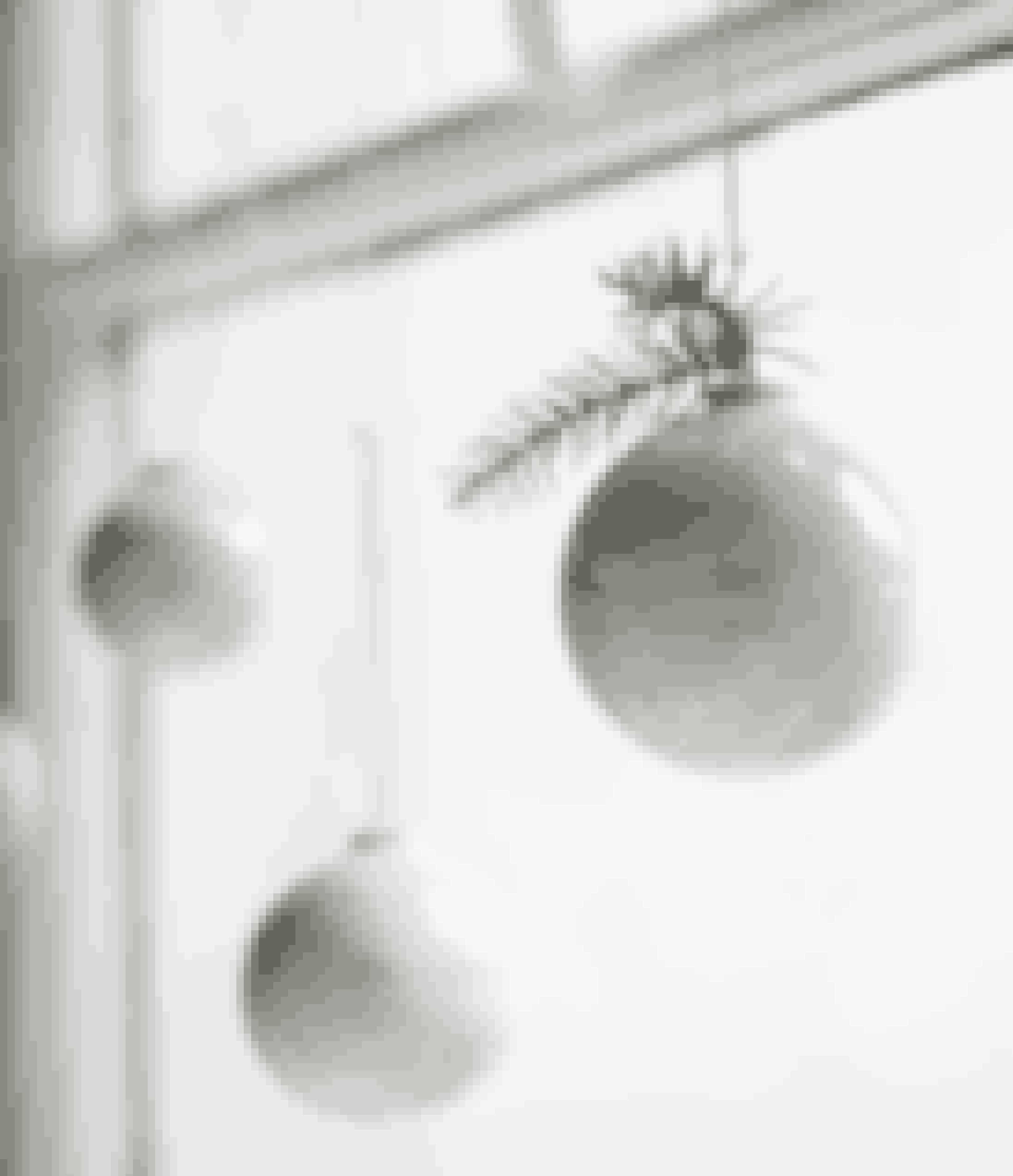 Er du også vild med Omaggio-serien fra Kähler, er disse julekugler med perlemorsstriber et musthave. De små skinnende kugler vil ligne fine snefnug på dit juletræ, når lyset reflekterer i perlemoren. Find dem her!
