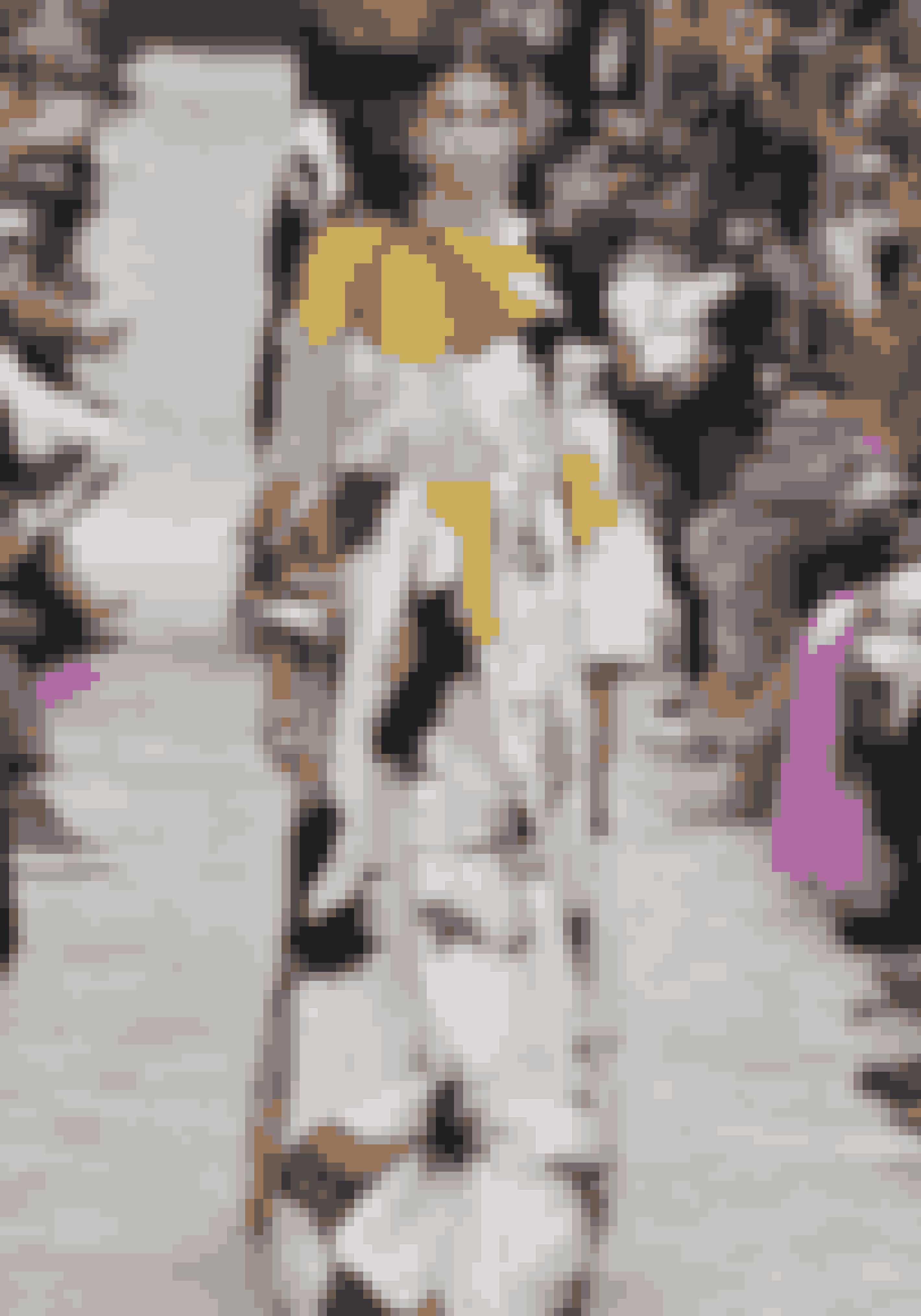 Hele familien Crawford/Gerber er ambassadører for Omega – Kaia, Rande, Cindy og Presley. På billedet ses Kaia på catwalken til Valentino AW18.