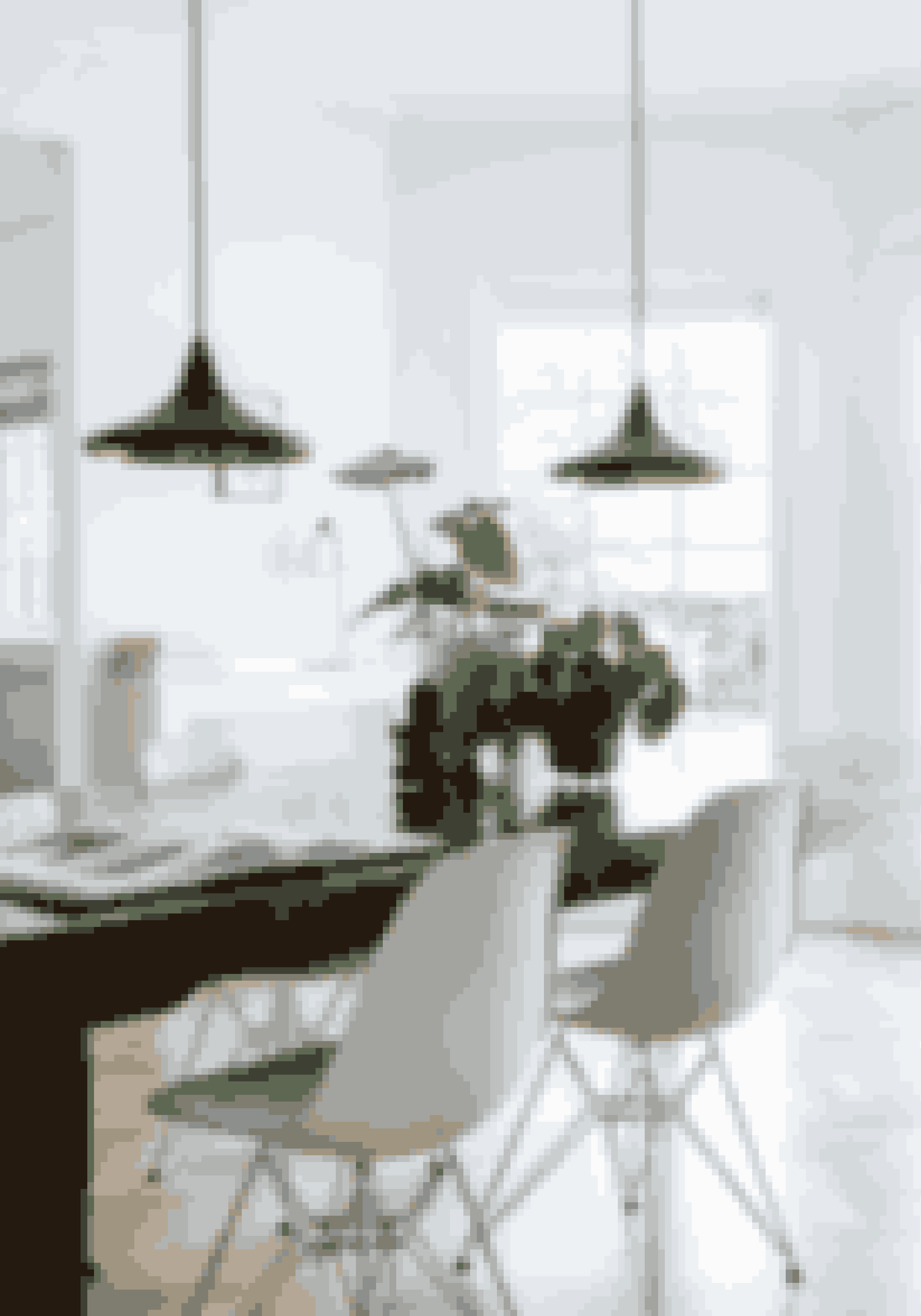 Sukkulenter behøver ikke kun at stå i vindueskarmen. Brug dem på spisebordet for at give langtidsholdbart liv. På bordet står fingerphilodendron, pengetræ og kaktus i simple lerpotter og en glasvase fra Pure Culture.