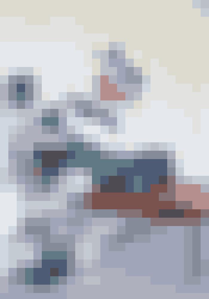 Her er stål, læder og velour-puder sat sammen med en stor plante. Daybeden er fra en interiørbutik i Aarhus, og velourpuderne er fra &tradition. Trådreolen af Verner Panton er fra Montana, og billedet er af Paul Gadegaard.