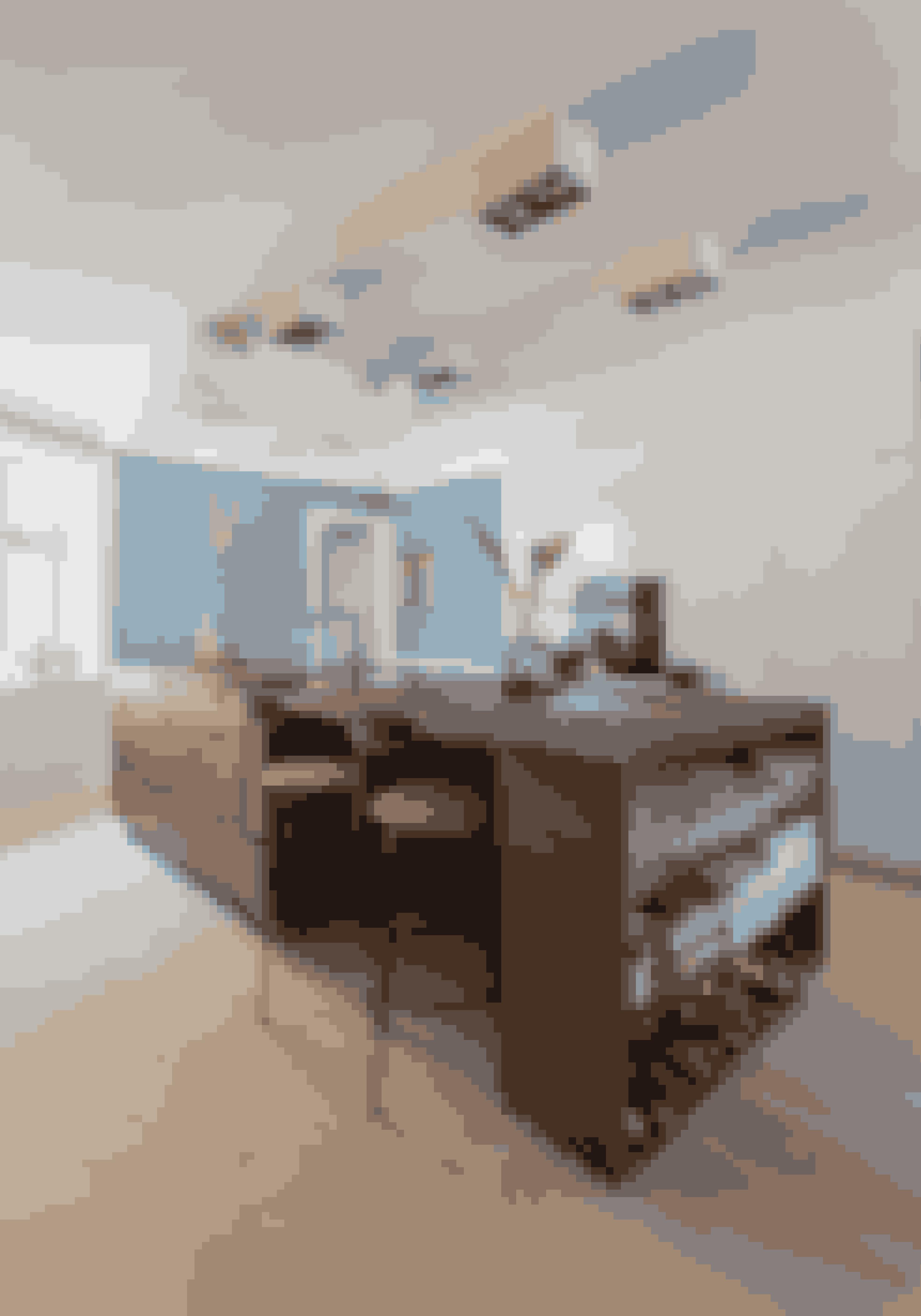 Når du skal bygge din næste køkkenø, så indtænk opbevaring i køkkenøen. Her er der blevet plads til vin, kogebøger og glas. Køkkenet er fra Handcrafted Interior, og det står i bejdset egetræ.