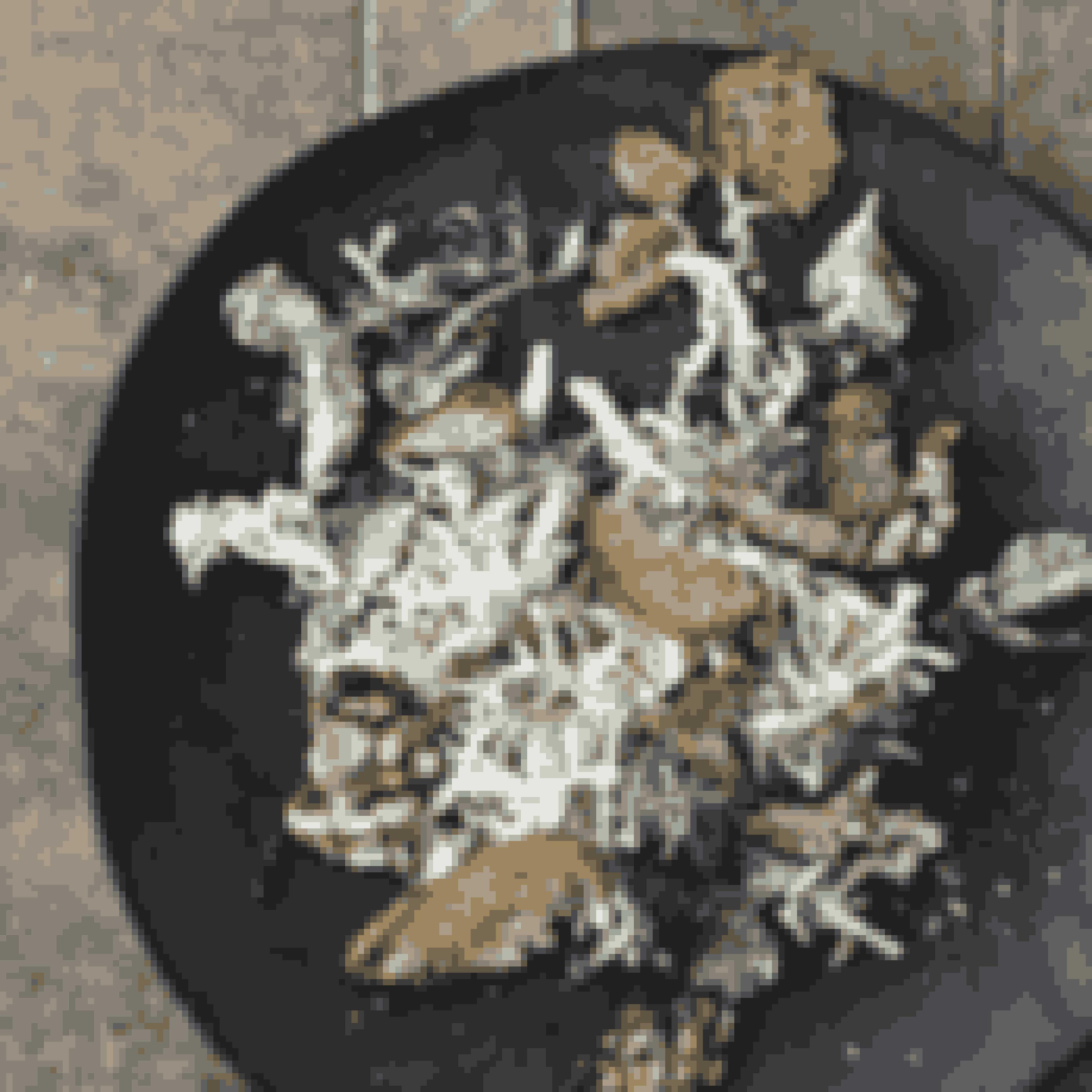 Lad dig ikke afskrække af artiskoks hårde ydre. Bag det gemmer sig et blødt og delikat indre. Nyd artiskok som creme, bagt eller helt enkelt med kryddersmør, eller som her, hvor vi har kreeret en fristende salat med ansjosdressing!Find opskriften her!