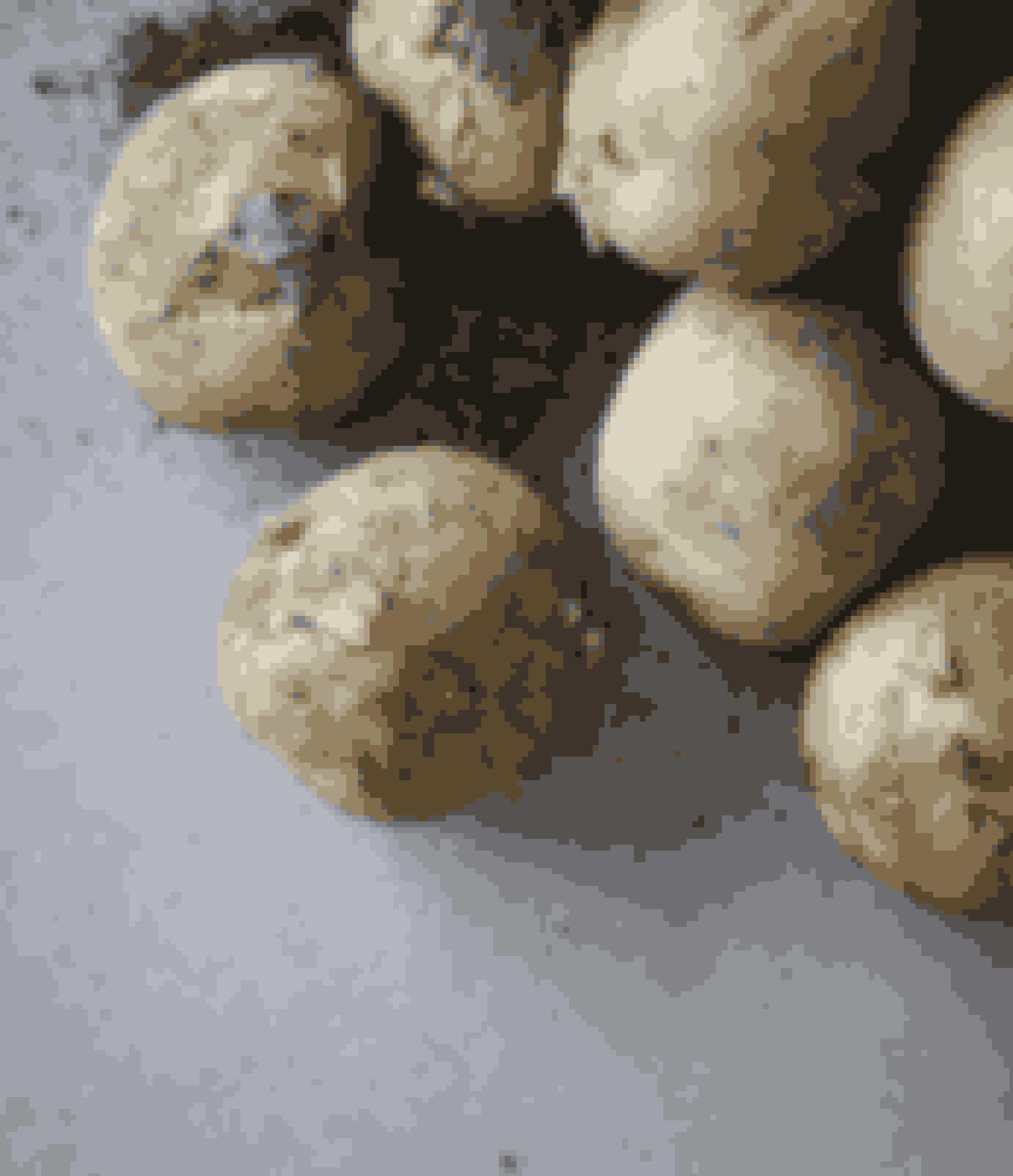 Kartofler er altid lækre, men mange af dem indeholder desværre også mange rester af sprøjtegifte. 37 % procent blev der fundet i de udenlandske, mens tallet var 15 procent for de danske.
