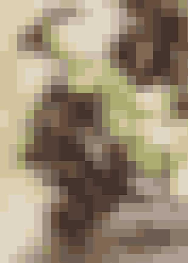 Nelliker er traditionelt blevet brugt som smertelindrende medicin. Især i kinesisk medicin er nelliker anerkendt som middel mod hals- og tandsmerter. Det er fordi nelliker indeholder stoffet eugenol, der har en naturlig smertelindrende effekt. Kryddernellikeeller nellikeolie (eugenol) anvendes desuden i mundskyllevand og tandpasta, hvor man udnytter den desinficerende virkning.Sådan gør du:Ta' 3 hele nelliker i mund og sut på dem, indtil de er bløde. Dernæst tygger du drøv på dem, indtil de nærmest er opløst i munden. Der sker intet ved, at du kommer til at sluge dem, men spyt gerne de gennemtyggede rester ud.Du kan tygge nelliker lige så meget og længe du vil, men pas på maven, hvis du sluger dem.