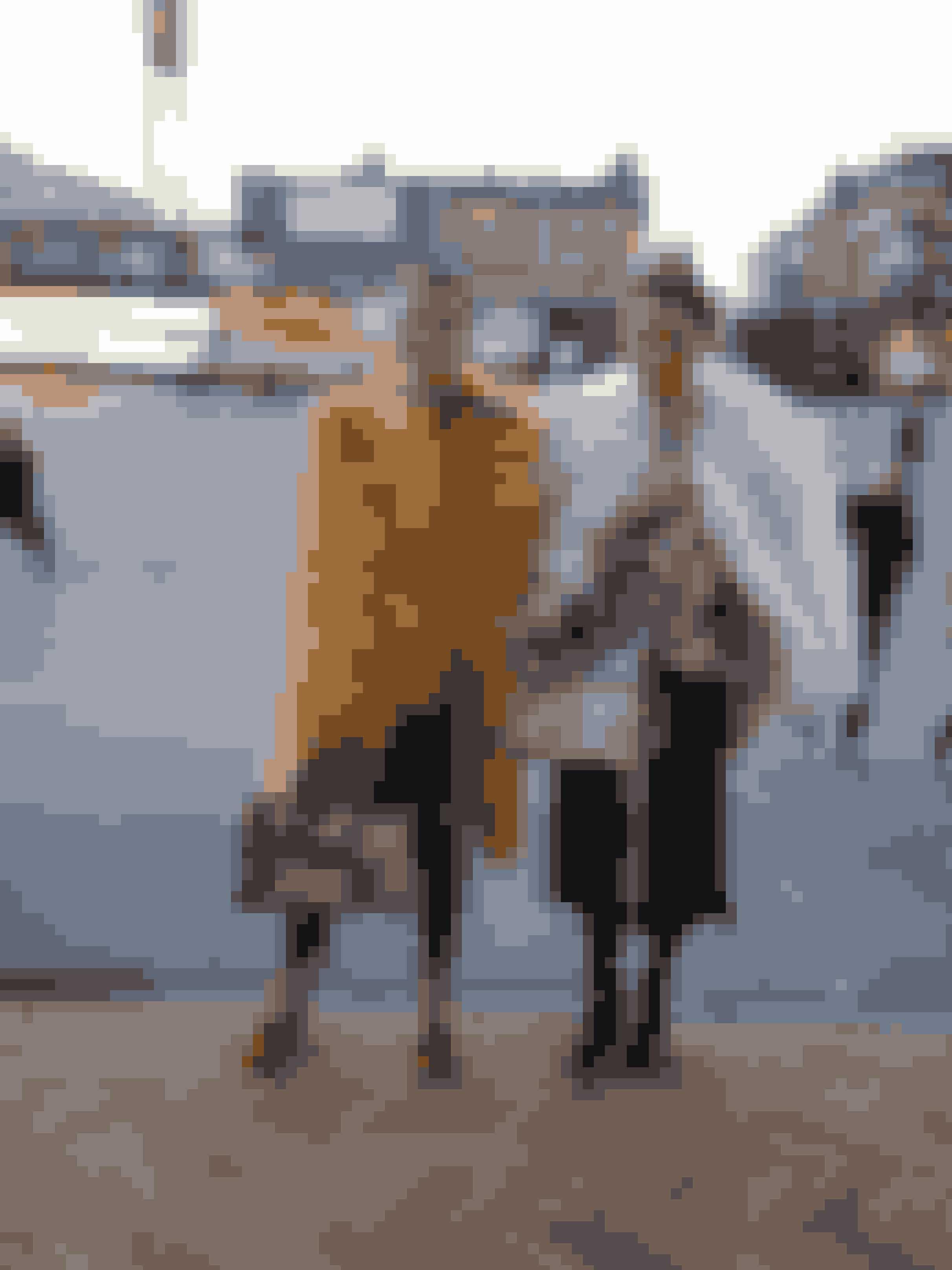 Janka Polliani og LineJanka (i gul pels) - Hvad har du på?Pels: Saks PottsSkjorte:Baum und PferdgartenSko og taske: GucciTørklæde: HermésJeans: AcneLine (i hvid pels) - Hvad glæder du dig mest til?Lala Berlin og Gannis show