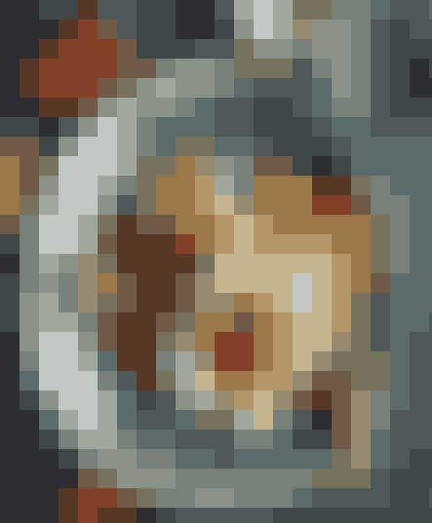 Tid: 30 min.Pasta:400 g hjemmelavet Fettuccine lavet på durummel, æg, salt og vand og med en tykkelse på 1-2 mm og en bredde på ca. 1 cm.Sauce:1 butternutsquash, mellemstor150 g lufttørret bacon1 hakket skalotteløgOlivenolie3-4 rosmarinkvisteSalt og peber150 g gorgonzolaSkræl og halvér squashen,fjern kernerne og skær kødeti tern.Skær baconen i tern, stegdem sprøde og læg dem på etstykke køkkenrulle.Kog pastaen.Steg skalotteløg, græskarog rosmarin i olie ved jævnvarme i 5-6 min., til de ermøre. Tilsæt bacon og stegendnu 1-2 min.Bland med pastaen og krydrmed salt og peber.Anret straks med en skivegorgonzola på og servér meddet samme.