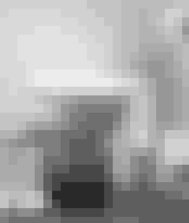 Vipp har gjort en pedalskraldespand til et livsstilsprodukt og med stor succes lavet spin-offs i andre retninger. F. eks. toiletbørsten, som Jette Egelund, datter af grundlægger Holger Nielsen, lavede efter faderens død. Hvem havde troet, at en lokumsbørste kunne være fashionabel? Om ikke andet gør prisen den til et samtale emne!