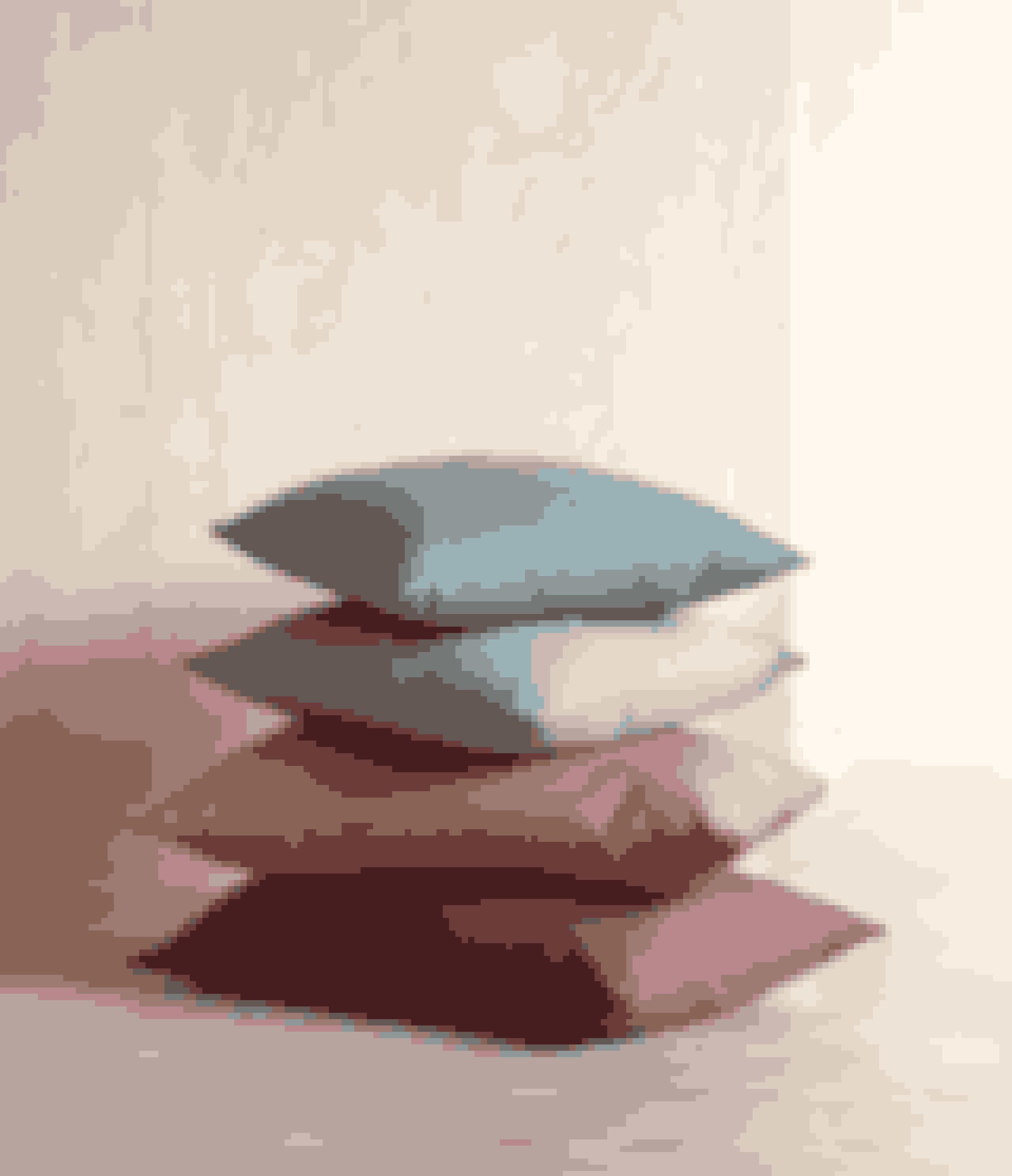 Pyntepude, fås i syv farver.45 x 45 cm, 58,00 kr.