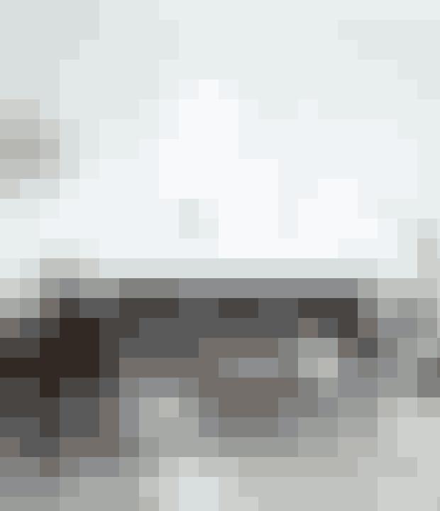 Et mere råt, nordisk udtryk med betongulv, lædersofa og sort safaristol.