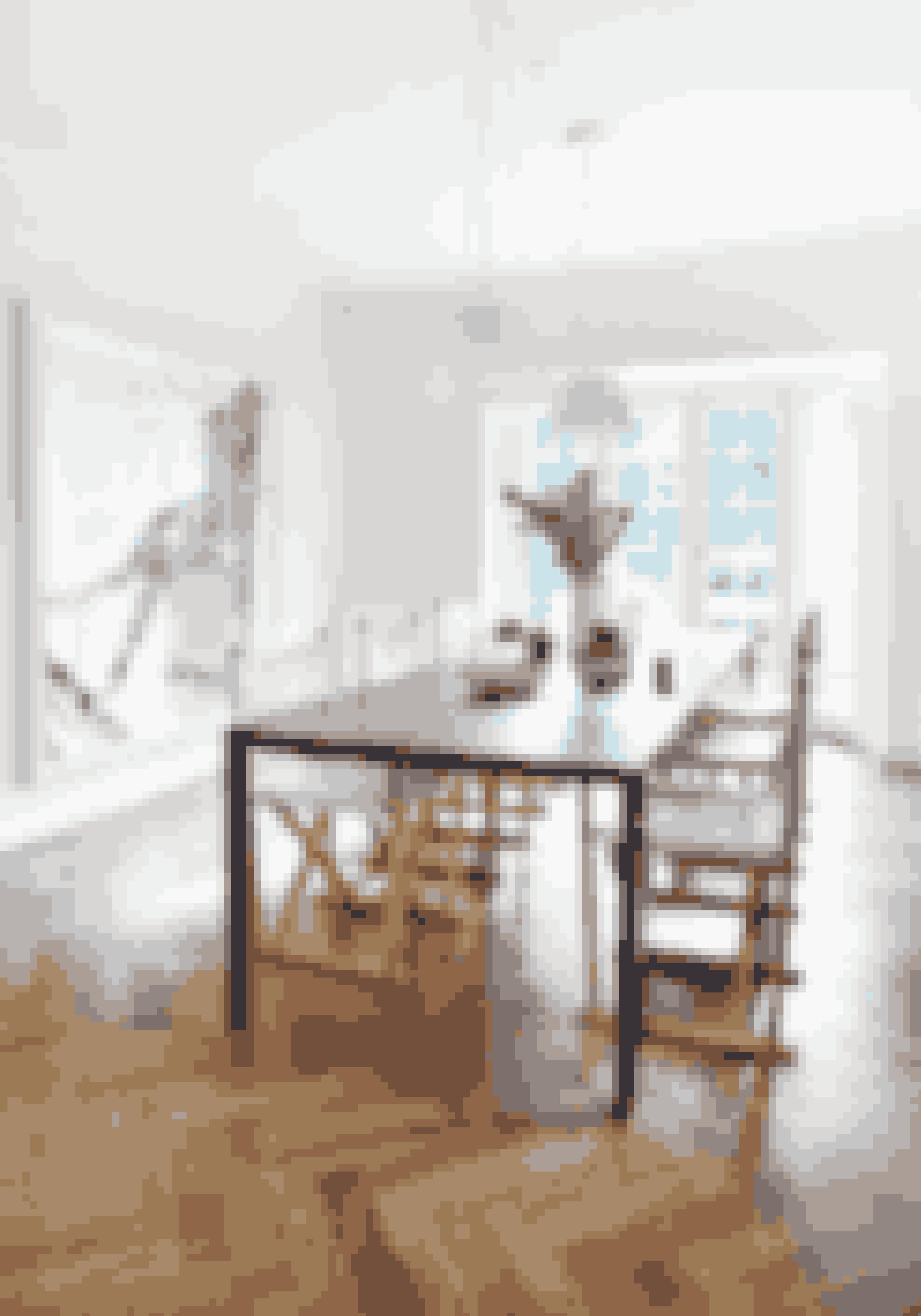 Stole i stof er med til at bløde et ellers sparsomt indrettet rum op. Vælger du en klassisk model, tilfører det også dit hjem historie.Spisebordet er fra 1000 Chairs, foldestolen er af Mogens Koch fra Carl Hansen og Søn. Pendlerne er fra Flos, og værket på væggen er af Evren Tekinoktay.