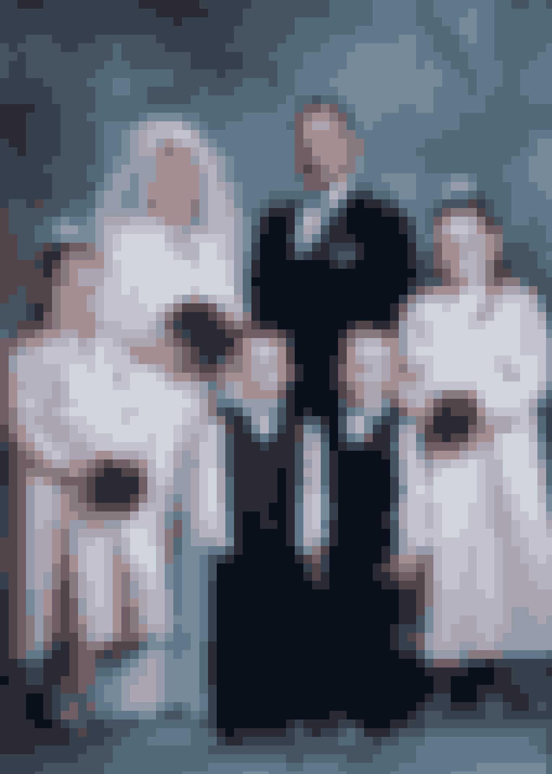 Lykken var fuldendt, da Laila og Michael blev gift i april 2003 med børnene som søde brudepiger og -svende. Fem måneder senere var Michael død.