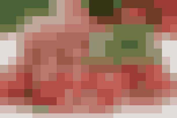 Jordbærsalsa er skønt sommertilbehør - se opskriften her