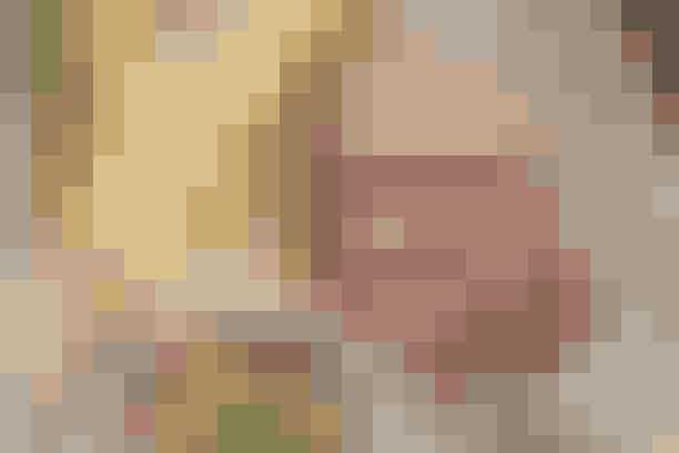 Andebryst og jordskokpuré Af Pia Friis Andreassen/Martin Tanggard   Lækkert andebryst med jordskokker og julesalat      4 personer  Det skal du bruge:  2-3 andebryster (ca. 530 g i alt) Groft salt  Jordskokpuré:  750 g renskrubbede jordskokker 50 g smør 1 tsk. timian Evt. lidt olie Salt   Julesalat:  3-4 hoveder julesalat Salt og peber 2 dl æblejuice Ca. 1 spsk. honning   Prøv også: Andebryst med ovnstegt tilbehør  Sådan gør du:  Jordskokpuré:  Del jordskokkerne på langs. Dup dem tørre og læg dem med skærefladen opad på en bageplade. Læg smørklatter ovenpå og krydr med timian. Bag dem godt møre i en 180° varm ovn (ca. 30 min.). Purér dem med det smeltede smør. Tilsæt lidt olie, hvis konsistensen er for tyk. Smag til med salt.   Andebryst:  Rids spæklaget i et rudemønster. Steg kødet over middel varme på en tør pande først på spæksiden i ca. 5 min., dernæst på kødsiden i 8-10 min. og til slut på spæksiden i 3-5 min. afh. af tykkelse. Lad kødet hvile i 5-10 min. Gem 2 spsk. andefedt fra panden.   Julesalat:  Kog salaten knap mør i letsaltet vand. Lad den dryppe af og del hovederne på langs. Steg dem gyldne i andefedtet. Tilsæt juice og honning og lad dem simre i 5 min. Vend dem og smag væden til med honning, salt og peber.   Tilberedningstid:   Ca. 45 min., heraf arbejdstid ca. 40 min.  Prøv også: Fyldt kalkun med pasta og spinatsauce