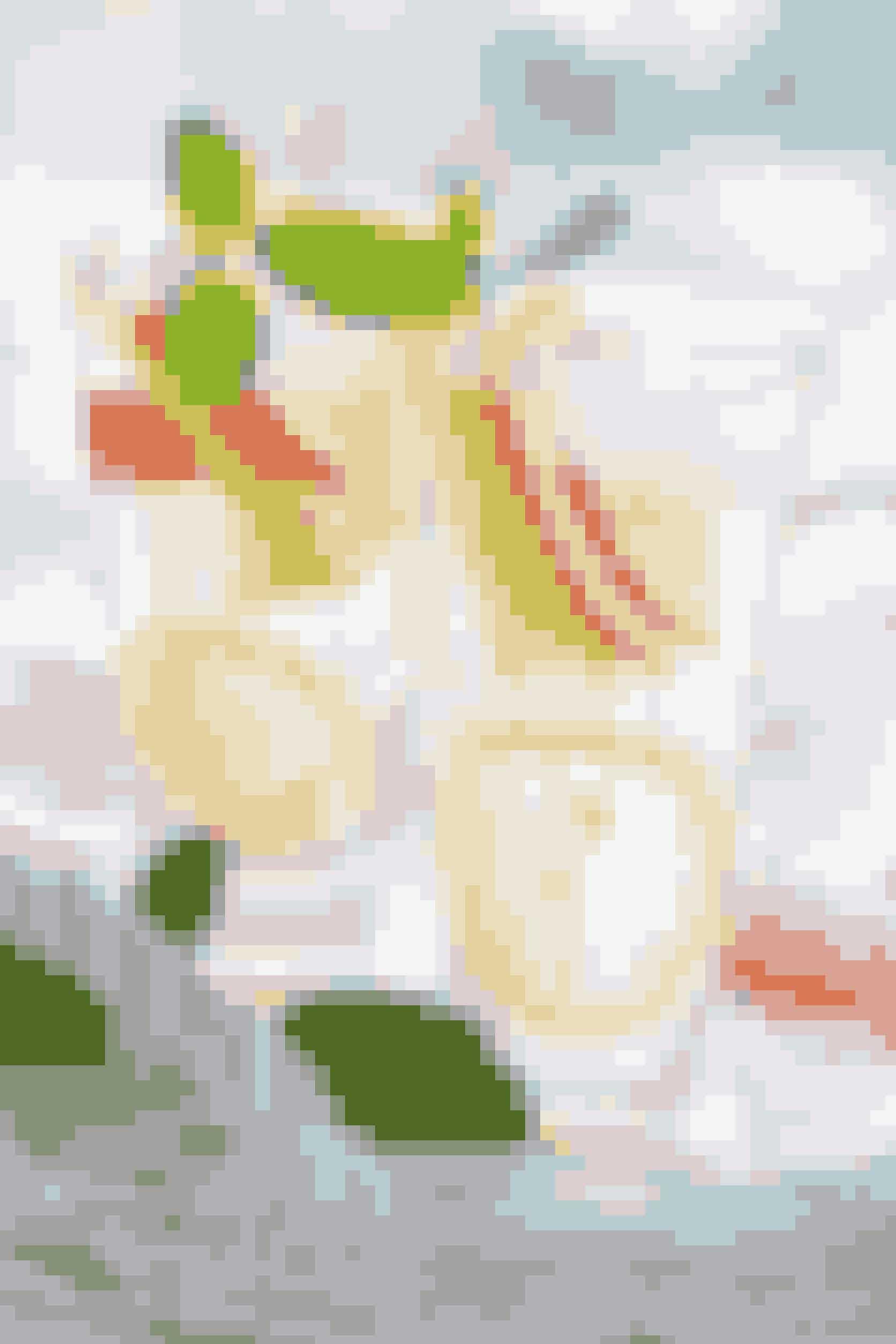 """Amerikanske """"The National Headache Foundation"""" foreslår juicen """"The Champagne Fooler"""" til at få bugt med den hovedpine, der gerne følger med en omgang tømmermænd. Den enkle opskrift til 4 glas følger her:1 - 1,5 glas æblejuice1 teskefuld citronsaft350 ml danskvandAfkøl 4 glas. Bland æblejuice og citronsaft. Tilsæt danskvand og omrør. Servér øjeblikkeligt."""