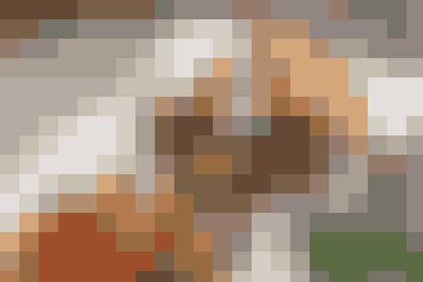 Cowboy-toast og salat Af Pia Friis Andreassen/Foto: Martin Tanggaard   Nem toast med bøf og løg        4 pers.   Ingredienser til cowboy-toast og salat:  8 skiver fuldkorns-toastbrød ½ icebergsalat Ca. 100 g flødeost   Bøf med løg:  800 g hakket oksekød 2-3 løg Smør og olie 2-3 spsk. vand Salt og peber   Salat:  2 store røde peberfrugter i tern 1 porre i strimler 1 potte grofthakket persille 1 dl rosiner   Dressing:  1 spsk. æble- eller hvidvinseddike  1½-2 spsk. olie Salt   PRØV OGSÅ: Pariserbøf   Fremgangsmåde:  Salat:   Bland ingredienserne til salaten. Hæld den sammenrørte dressing over og lad salaten trække i ½ time.   Bøf med løg:  Skær løgene i tynde ringe. Steg dem lysebrune i 1 spsk. smør og 1 spsk. olie. Tilsæt vand og ½ tsk. salt og steg dem, til vandet er opsuget. Tag dem af panden og hold dem varme i alufolie.   Form kødet til fire flade bøffer og steg dem i 2 spsk. olie over middelstærk varme i ca. 8 min. på hver side. Krydr med salt og peber.   Cowboy-toast:   Bryd icebergsalaten i mindre stykker. Rist brødskiverne og fyld dem med salatblade, bøf, flødeost og løg.   Tilberedningstid:   Ca. 35 min., heraf arbejdstid ca. 25 min.   PRØV OGSÅ: Clubsandwich med kylling