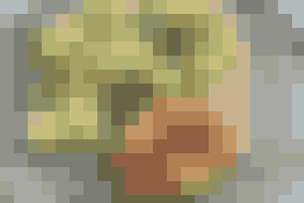 Poussiner og grov kartoffelmos  Af Pia Friis Andreassen/Foto: Martin Tanggaard    Lækker middag med poussiner      4 pers.    Ingredienser til poussiner og grov kartoffelmos  2 poussiner a 400 g  2 spsk. olie  ½ spsk. dijonsennep  1 spsk. honning  1 tsk. salt og ¼ tsk. peber   Kartoffelmos og bønner:  2½ kg kartofler (halvdelen kan bruges dagen efter til svensk pølseret og rugbrøds-chips)  Salt og peber  50 g smør  600 g grønne bønner   PRØV OGSÅ: Kylling med stegte orangerødder   Fremgangsmåde Poussiner:  Opvarm ovnen til 225°. Skyl poussinerne ind- og udvendig og del dem i halve. Klip rygsøjlen af. Dup poussinerne tørre og brun dem i olien ved god varme. Læg dem i et ovnfast fad. Rør sennep, honning, salt og peber sammen og smør blandingen på poussinerne. Hæld lidt vand i fadet og steg poussinerne midt i den varme ovn i ca. 25 min.   Kartoffelmos og bønner:  Skræl kartoflerne og skær dem i kvarter. Kog dem møre i saltet vand. Hæld vandet fra og lad dem dampe tørre under låg. Tag halvdelen fra til tirsdag. Mos resten af kartoflerne groft, vend smørret i og krydr med salt og peber. Kom bønnerne i kogende vand i 3-4 min. Lad dem dryppe af og vend dem med kartoflerne.   Tilberedningstid:   Ca. 45 min., heraf arbejdstid ca. 30 min.   PRØV OGSÅ: Kylling i karry