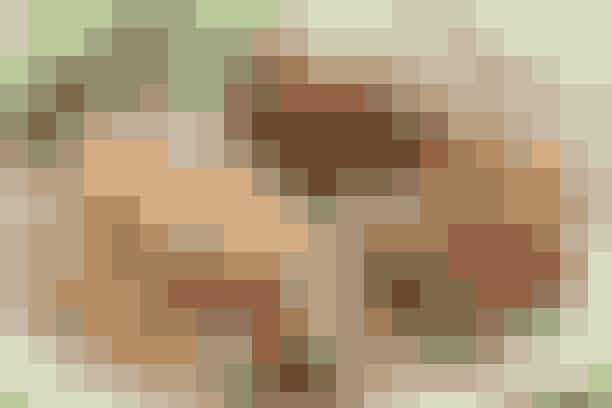 Farseret porre  Af Pia Friis Andreassen/Foto: Martin Tanggaard    Lækker middag med porre svøbt i fars, råkostsalat og bagekartofler      Ingredienser til farseret porre  Farseret porre:  500 g hakket svinekød 1 tsk. salt og ½ tsk. peber 1 tsk. timian 2 spsk. revet løg ½ dl grahamsmel eller fintvalsede havregryn 1 æg Ca. 1½ dl mælk 1 bdt. porrer 1 sammenpisket æggehvide Ca. 1½ dl rasp 2 spsk. olie og 1 spsk. smør   Råkostsalat:  2 tsk. grovkornet sennep 1 spsk. (æble)eddike 2-3 spsk. olie Salt ½ blomkål 3-4 æbler 1 dl soltørrede abrikoser i strimler   Bagt kartoffel:  6 bagekartofler forsynes med et kryds i toppen og bages møre ved 200° i 1-1½ time. Serveres med smør   PRØV OGSÅ: Grøntsagslasagne   Fremgangsmåde Råkost:  Rør sennep, eddike og olie sammen. Smag til med salt. Riv blomkål og æbler groft. Vend blandingen med kål, æbler og abrikoser.   Farseret porre:  Bland kød og krydderier. Rør løg, mel og sammenpisket æg i. Tilsæt mælken lidt efter lidt, og lad farsen hvile i køleskabet, til resten er klar.   Skær porrerne i 8 cm lange stykker (kassér den øverste grønne del) og kog dem netop møre i en smule vand. Lad dem dryppe af. Form farsen til aflange firkanter. Læg et porrestykke på hver og rul farsen omkring porren. Vend rullen i først i æggehvide og så i rasp blandet med salt og peber. Steg dem i fedtstoffet i 2-3 min. på alle fire sider.   Tilberedningstid:   Ca. 1 time og 45 min., heraf arbejdstid ca. 30 min.   PRØV OGSÅ: Burger med ærtepesto