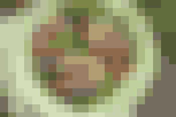 Salat med oksekød  Af Pia Friis Andreassen/Foto: Martin Tanggaard    Lækker og fyldig middagssalat      4 pers.   Ingredienser til salat med oksekød  2 møre oksebøffer, entrecote eller filet  1 spsk. olie og 1 spsk. smør  Salt og peber   Fyld:  250 g babyspinat  1 stort rødløg  500 g blommetomater  3 avocadoer   Dressing:   1-2 friske chilier i skiver (med eller uden kerner)  5 spsk. fiskesauce eller sojasauce  Saften af 1 citron  1 spsk. sukker   PRØV OGSå: Fyldig salat med jordbær og bacon   Fremgangsmåde Bøffer:   Dup bøfferne tørre og brun dem i fedtstoffet i ca. 1 min. på hver side. Krydr med salt og peber, dæmp varmen og steg dem i yderligere 1½-2 min. på hver side. Tag bøfferne af varmen og lad dem hvile i ½-1 min. Skær dem i tynde strimler på tværs af kødfibrene.   Fyld:   Skyl spinatbladene grundigt og slyng dem tørre. Skær løget i ringe. Del tomaterne i halve. Del avocadoerne, fjern stenene og skræl avocadoerne. Skær dem derpå i både.   Dressing:  Rør ingredienserne til dressingen sammen. Rør, til sukkeret er opløst. Vend alle ingredienser til salaten sammen.   Tilberedningstid:  Ca. 30 min., heraf arbejdstid ca. 30 min.   PRØV OGSÅ: Oksekød i wok