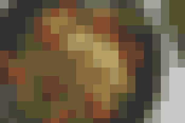 Lynstegt svinekød og grøntsager  Af Pia Friis Andreassen/Foto: Martin Tanggaard    Nem wok-ret til hverdagsaftenerne      4 pers. Ingredienser til lynstegt svinekød og grøntsager  400 g hakket svinekød  2 løg  250 g grønne bønner  3 peberfrugter i forskellige farver  2 spsk. olie  1 spsk. mild karry  1 tsk. spidskommen  3 spsk. sojasauce  1 spsk. citronsaft   Tilbehør:  250 g fuldkornsnudler tilberedt efter anvisningen på emballagen.   PRØV OGSÅ: Kylling og salat med kikærter   Fremgangsmåde Skær løgene i strimler, nip bønnerne og skær peberfrugterne i tynde stave. Opvarm en wok, til den er rygende varm.   Tilsæt 1 spsk. olie og steg kødet heri, til det netop skifter farve. Tilsæt karry og spidskommen og steg det i yderligere 20 sek. Tag kødet op af wokken. Tilsæt resten af olien og steg løg og bønner heri under omrøring i 3 min. Tilsæt peberfrugterne og steg det hele i yderligere 2 min. Kom kødet tilbage i wokken, tilsæt sojasauce og citronsaft og varm retten hurtigt igennem.   Tilberedningstid: Ca. 30 min., heraf arbejdstid ca. 30 min.  PRØV OGSÅ: Mørbrad i wok