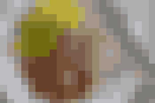 Kalvecuvette i gryde  Af Pia Friis Andreassen/Foto: Martin Tanggaard    Lækker steg til middagsbordet      4 pers. Ingredienser til kalvecuvette i gryde Ca. 800 g kalvecuvette  1 spsk. olie og 1 spsk. smør  Salt og peber  ½ dl hvidvin 1 dl hønsebouillon  2 dåser hakkede tomater  2/3 potte oregano   Tilbehør:  Ca. 300 g pastapenne eller -skruer  Høvlet parmesanost   Salat:  2 stk. hjertesalat ½ spsk. hvidvinseddike 3 spsk. koldpresset olie Salt   PRØV OGSÅ: Roastbeef, bagte kartofler og spidskålssalat   Fremgangsmåde Cuvette: Fjern overflødigt fedt. Rids spæklaget og brun cuvetten i fedtstoffet ved god varme. Krydr med salt og peber. Kassér fedtstoffet og hæld vin og bouillon ved. Lad det simre under låg i 35-40 min., eller til stegetermometeret viser 65° (kødet er gennemstegt). Tag stegen op og lad den hvile i 15 min. Hæld tomaterne i gryden og varm dem op. Tilsæt hakket oregano og lad det småkoge i 10 min. Smag til med salt og peber.   Tilbehør: Kog pastaen efter anvisningen på emballagen. Lad den dryppe af og vend den med tomatsaucen. Strø ost over.   Salat: Riv salatbladene i mindre stykker. Rør eddike og olie sammen og smag til med salt. Vend salatbladene i.   Tilberedningstid:   Ca. 1 time, heraf arbejdstid ca. 15 min.   PRØV OGSÅ: Cuvettesteg med kold bearnaisesauce