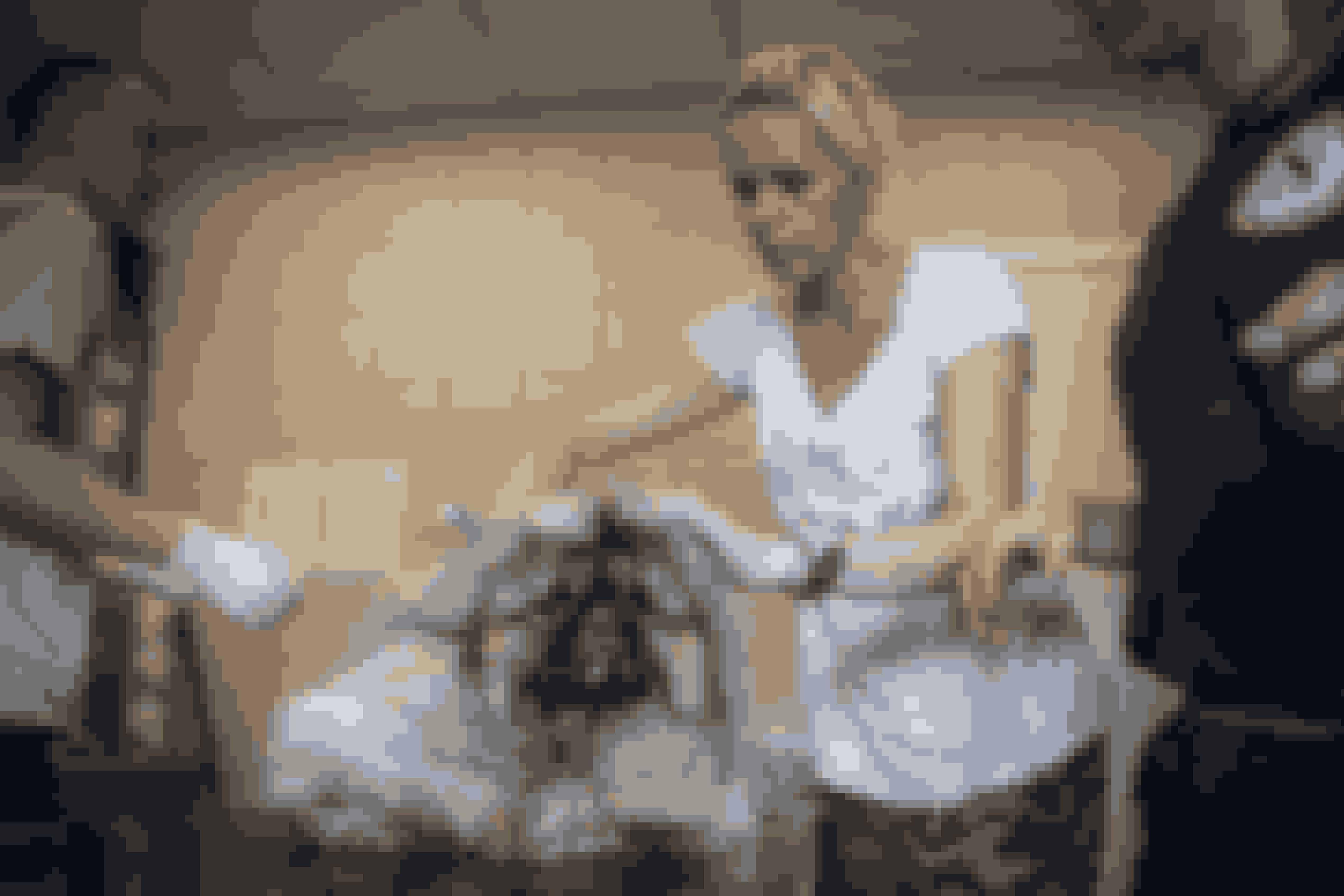 Nina Amdi Carlsen undersøger den nuttede hund, som de har givet navnet Arno.