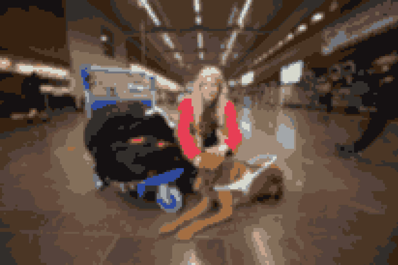 Sara er netop kommet hjem fra en tur til Italien med sin førerhund.