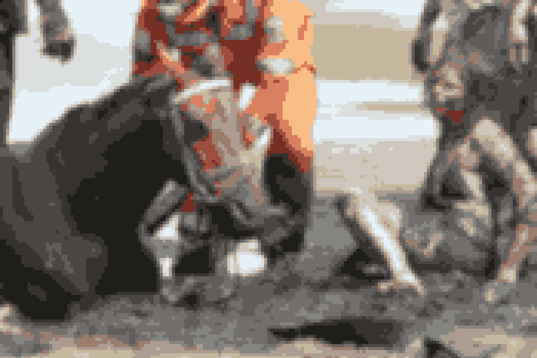 Hjælpen kom i form af et hold brandmænd, en dyrlæge og en nabo med en traktor. De fik befriet Nicole.