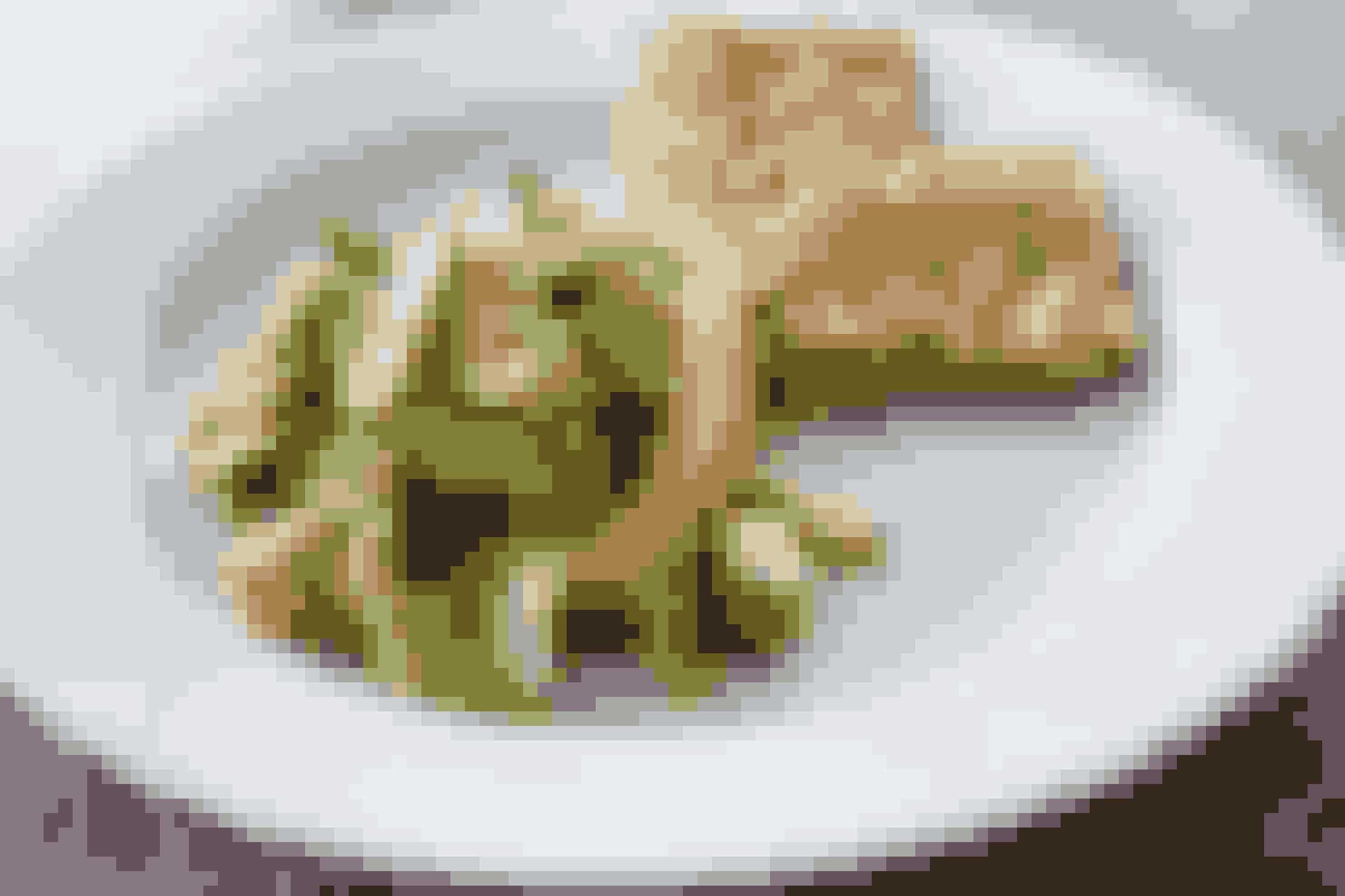 Avocadosalat1 rød chili1 dusk koriander2 spsk. olivenolie4 spsk. creme fraiche 9%)1 tsk. salt og lidt peberSaften af ½ usprøjtet citron samt citronskalSådan gør du: Skær avocadoerne i halve og fjern stenene. Skub avocado ud med en ske, så du kan skære alle de halve dele i mellemstore tern. Kom dem i en skål og hæld straks citronsaft henover. Så undgår du, at de bliver brune, og det giver også god smag.Skær tomater i tynde både eller mellemstore tern og kom dem deri. Skær så chilien i små tern, pres hvidløget ned i skålen og hæld olie ved. Drys salt og peber i og hak koriander. Vend det hele godt, men forsigtigt sammen. Hæld i en serveringsskål. Pynt er ikke nødvendig, fordi den er så fin i sine farver. Det smager dejligt på knækbrød.* Få flere opskrifter fra Julie i Ude og Hjemme nr. 12.