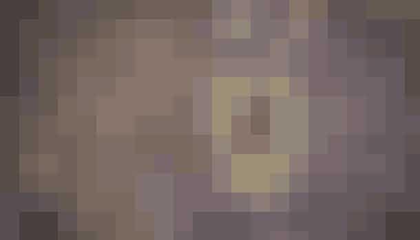 PeruEl Senor de los Milagros, eller Herren af Mirakler, er en festival i Peru, hvor man hylder et maleri af Jesus, der på mirakuløs vis overlevede jordskælvet, der i 1687 ellers ødelagde næsten resten af Lima, Peru.Billedet bliver hyldet ved, at utallige mennesker samles og bærer billedet rundt på gaderne.