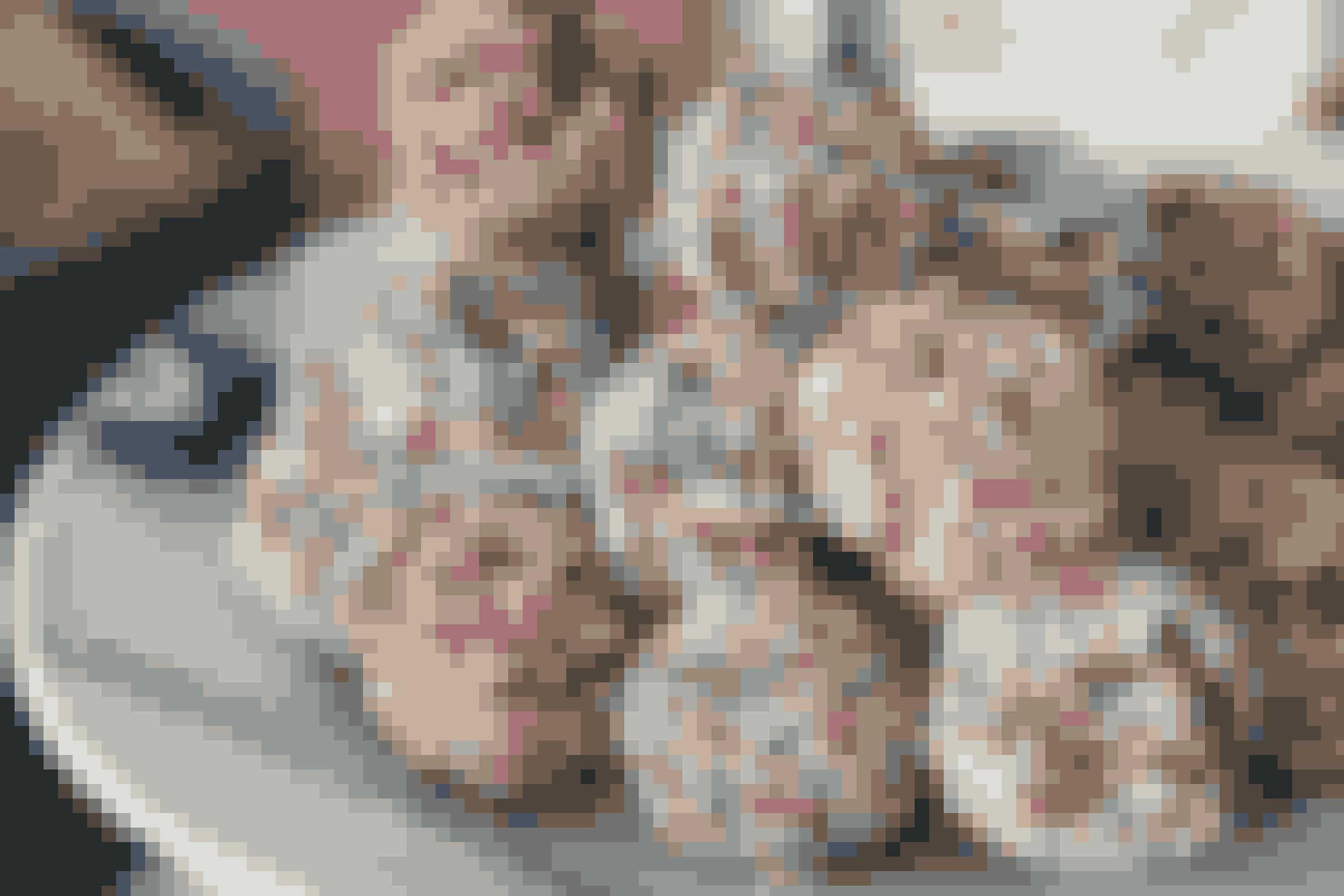 Tøse KuglerCa. 35 stk.200 g smør3 dl flormelis1 dl kakao pulver6 dl havregryn (finhvalsede)4 spsk. stærk kold kaffeSådan gør du:Rør smør, flormelis og kakaopulver sammen, til det er luftigt. Jeg bruger elpisker.Tilsæt havregryn og kaffe og rør videre, indtil det er helt sammenrørt.Form dem til små kugler og rul dem i krymmel og stil på køl, indtil de skal bruges.Kan passende også laves 1-2 dage før.TIP: Kom dem i mini-muffinsforme - det ser indbydende og lækkert ud. * Få flere opskrifter fra Julie i Ude og Hjemme nr. 12.