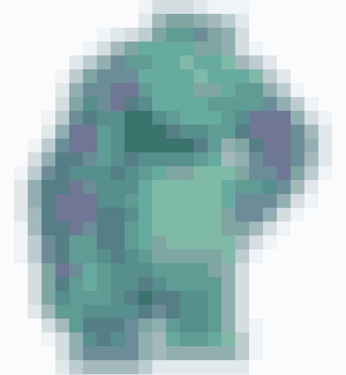 """Sulley fra """"Monsters Inc"""" har 2,3 millioner hår på sin krop, og de er alle tegnet og animeret fra bunden! Det betød, at det tog 12 timer at animere hvert eneste sekund med ham i filmen."""
