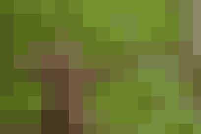 Det skal du bruge:  En læderjakke En sort T-shirt Chinos  Herreagtige støvler Hvis du er rigtig sej, så laver du en bue og pil af en gren og noget snor!