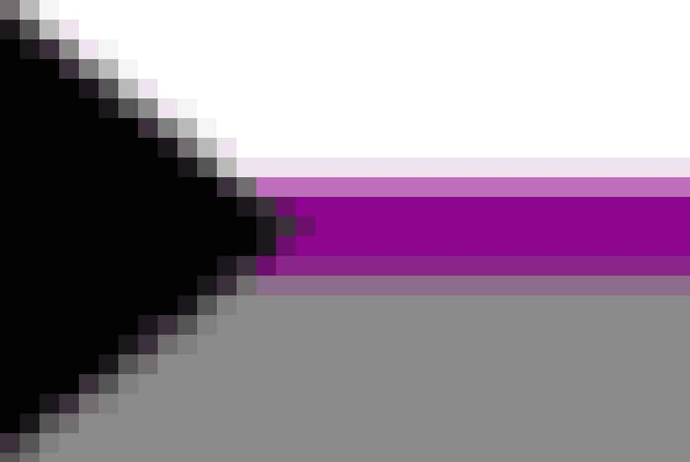 Flaget for demiseksuelle Demiseksualitet er på det aseksuelle spektrum, og derfor har dette flag de samme farver, som det forrige. Når man er demiseksuel betyder det, at man kun er seksuelt tiltrukket af personer, man har en stærk følelsesmæssige forbindelse til.